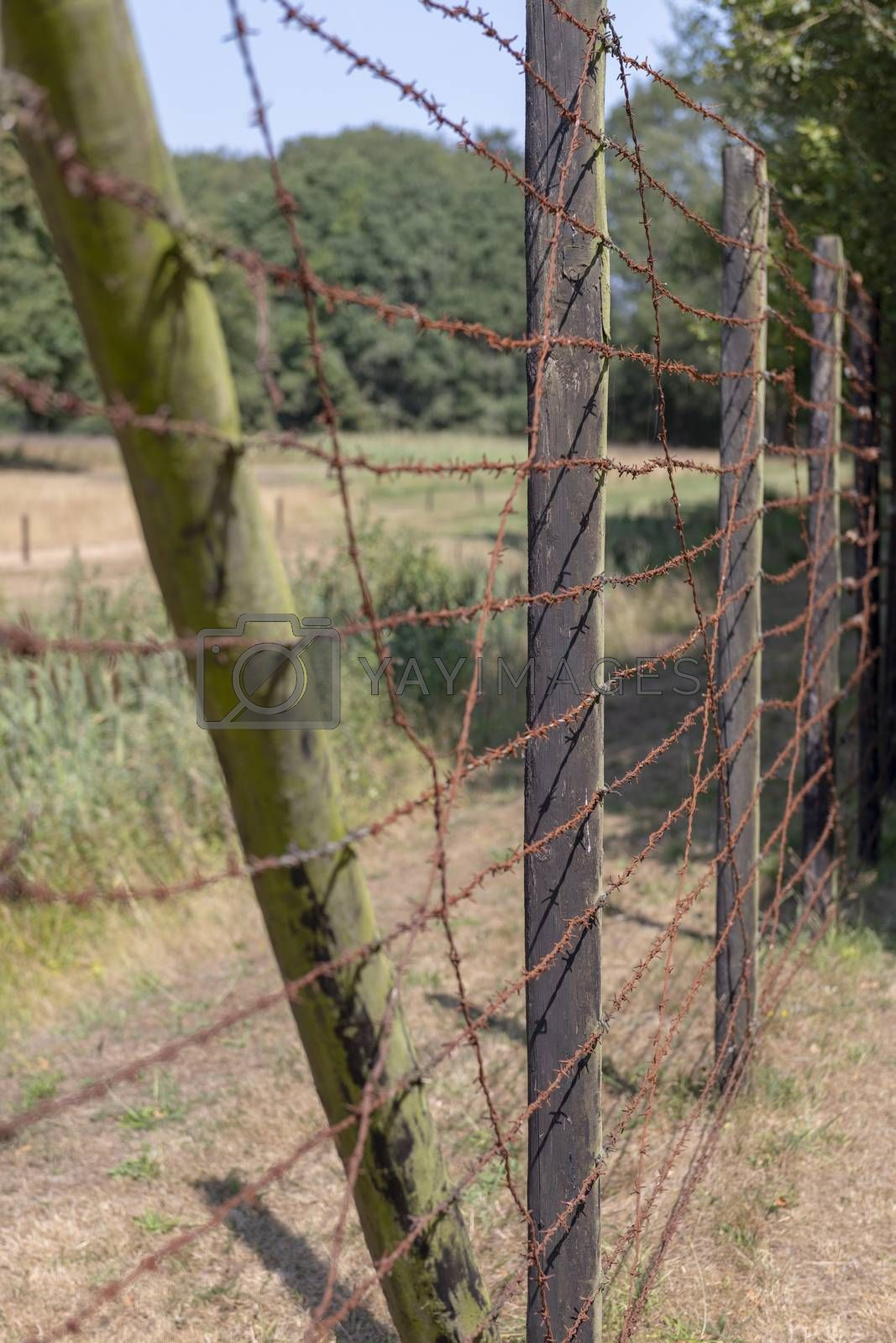 High fence with barbed wire  by Tofotografie
