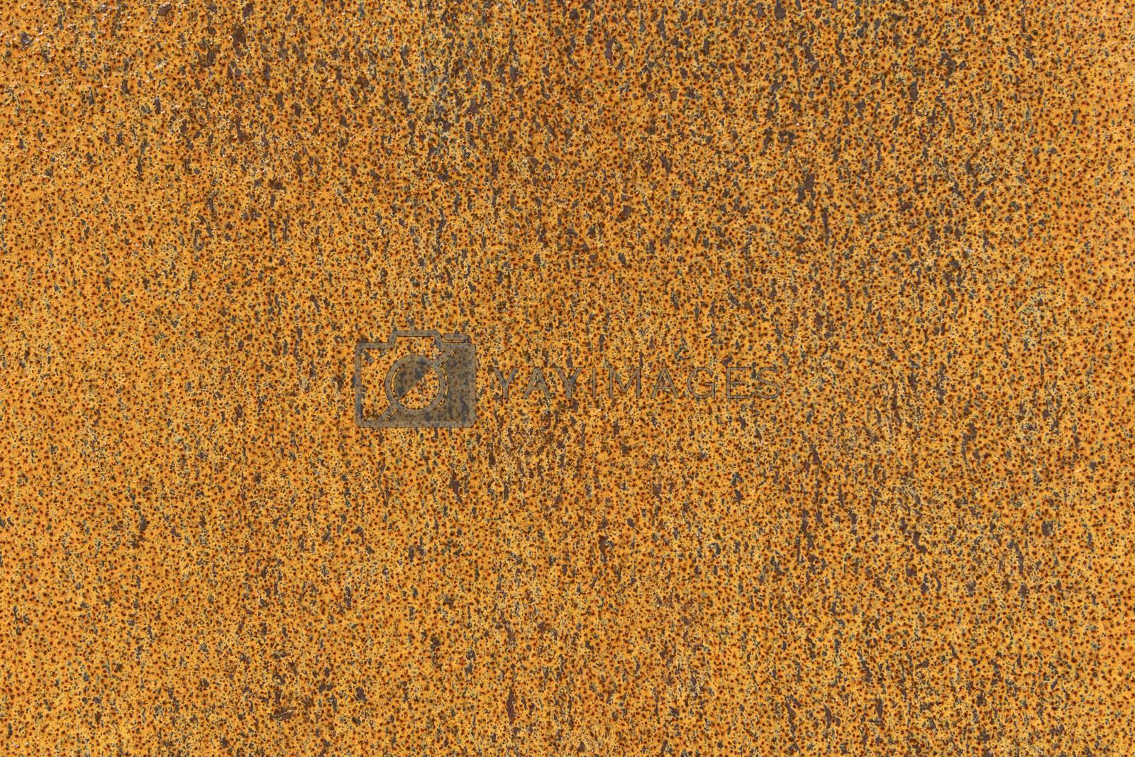 Rusty metal corten steel plate background picture
