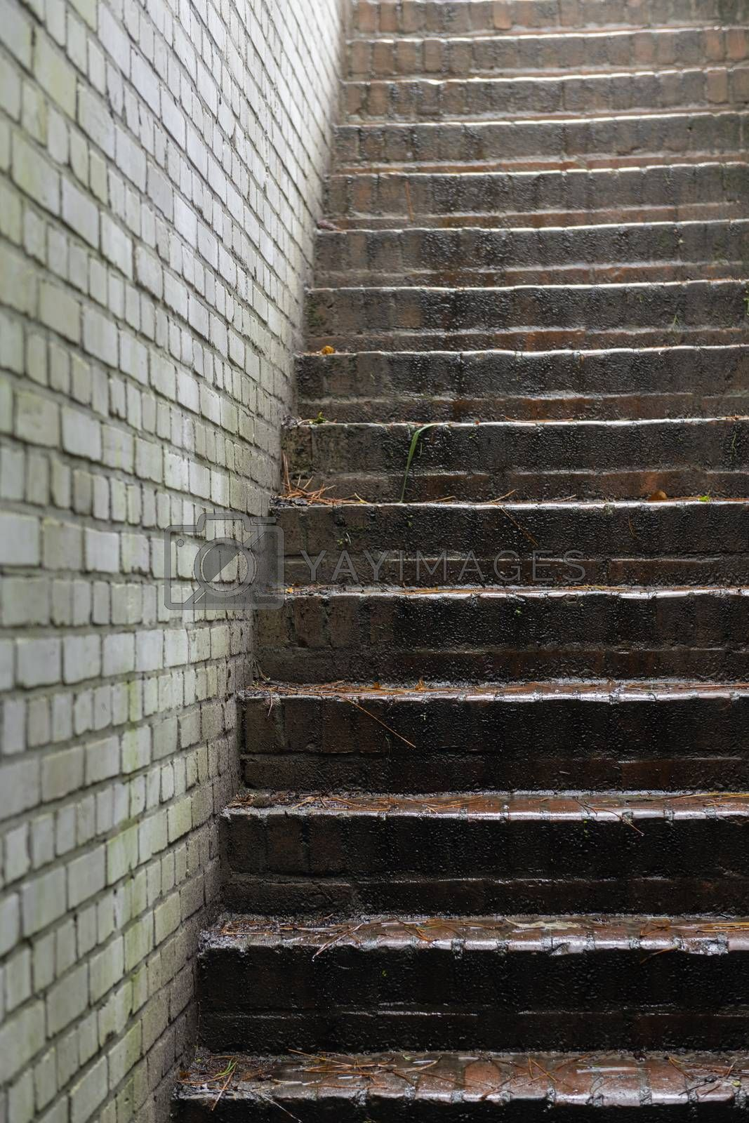 Brick staircase in an old German bunker as a part of the Atlantic Wall on the island of Terschelling in the northern Netherlands