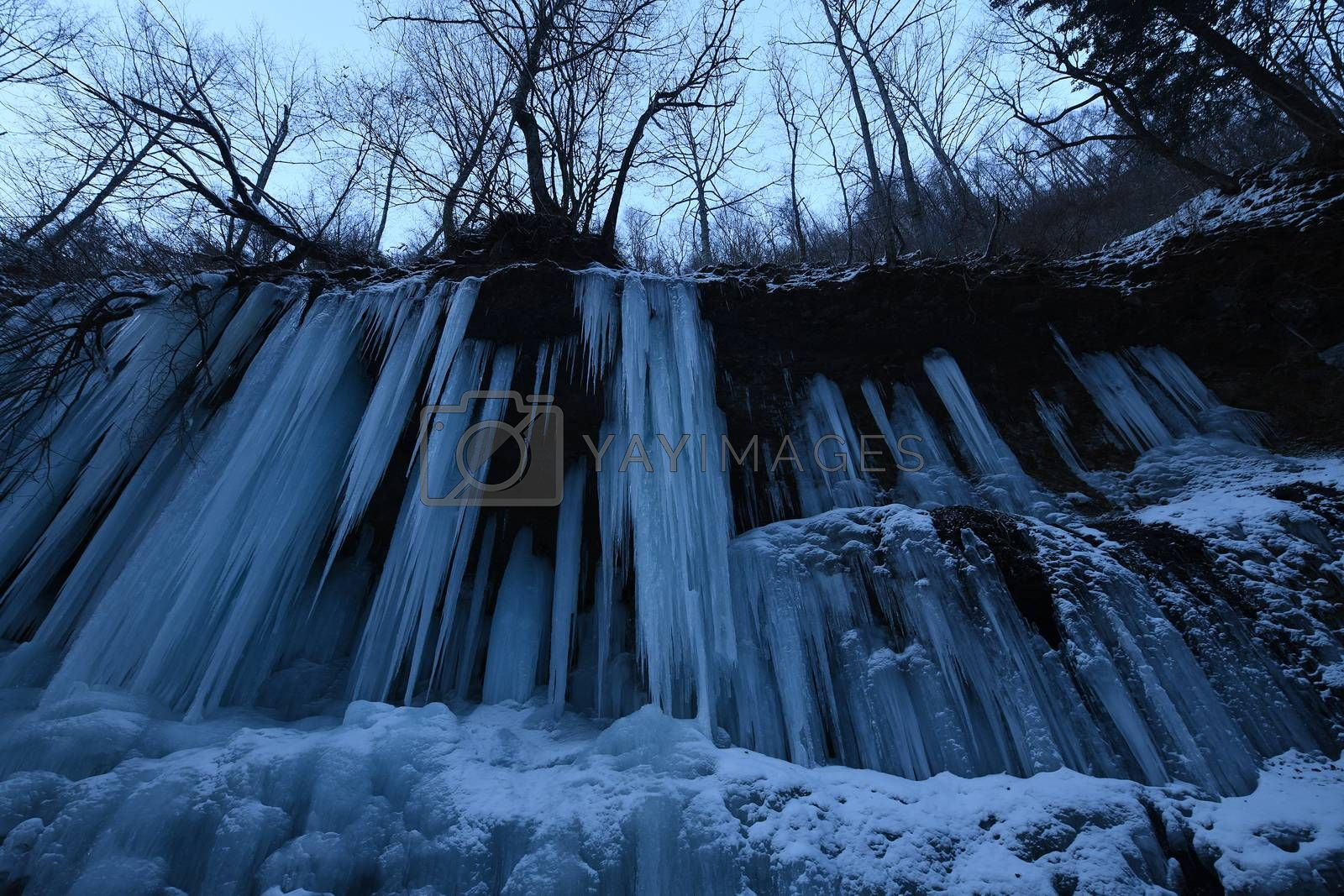 Royalty free image of Icicles from Frozen waterfall in Nagano Japan by porbital