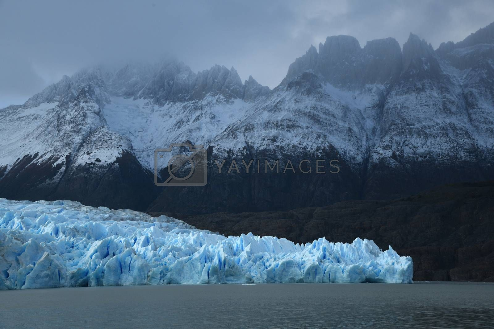 Royalty free image of Blue ice from Glacier Grey at Patagonia Chile by porbital