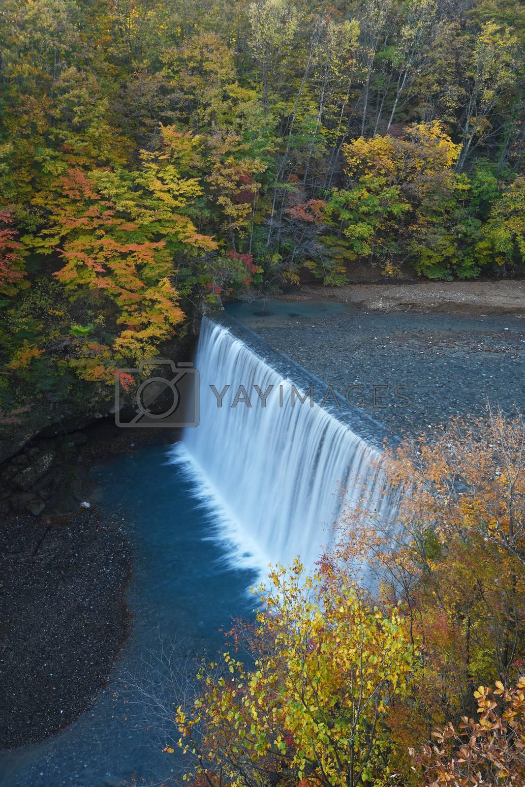 Royalty free image of Autumn scene with a dam near Tohoku, Japan by porbital