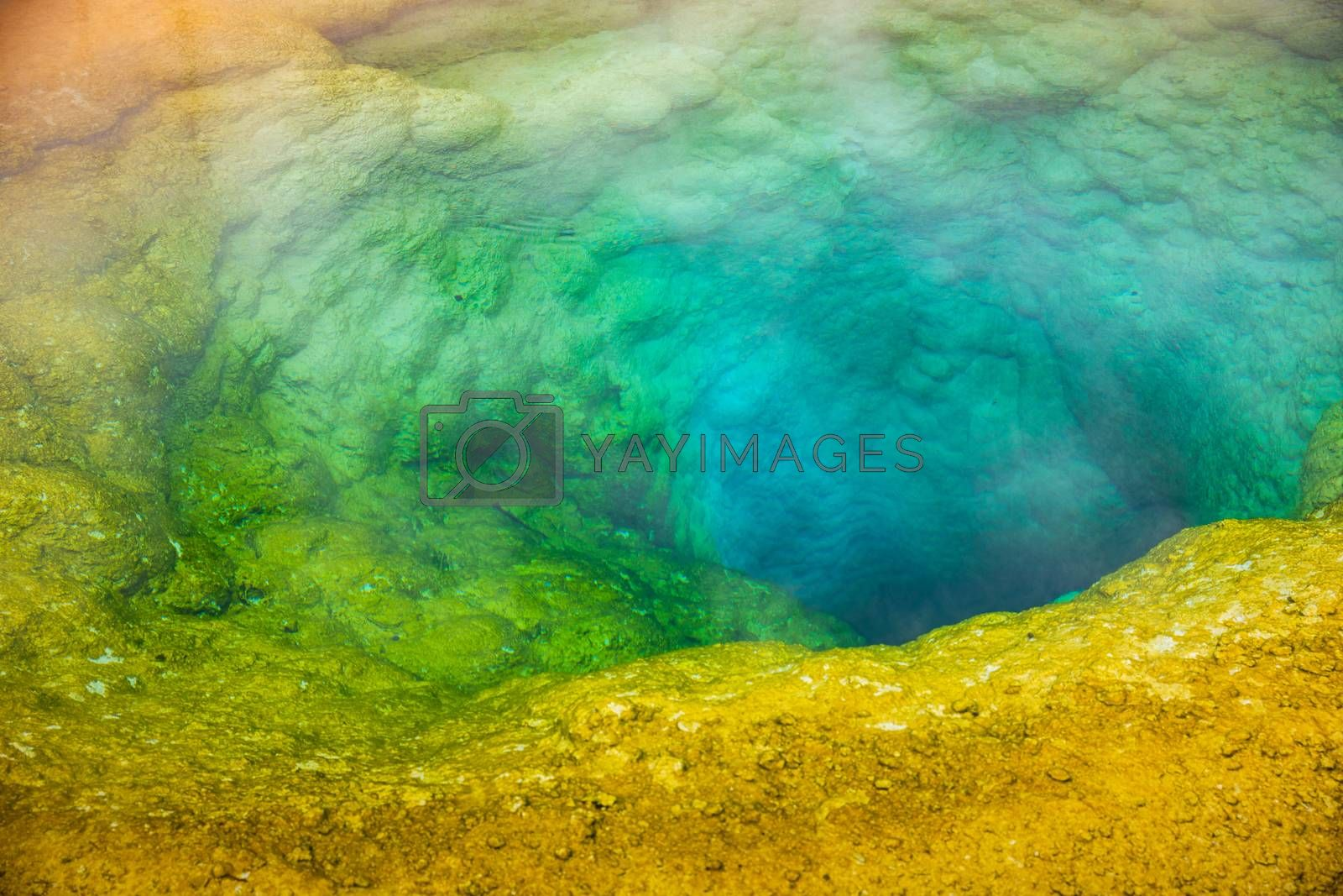 Colorful deep geyser basin with boiling water from geothermal heat, Morning Glory, Yellowstone National Park, Wyoming, USA. Colors of basin depending on temperature and kind of bacteria inside.