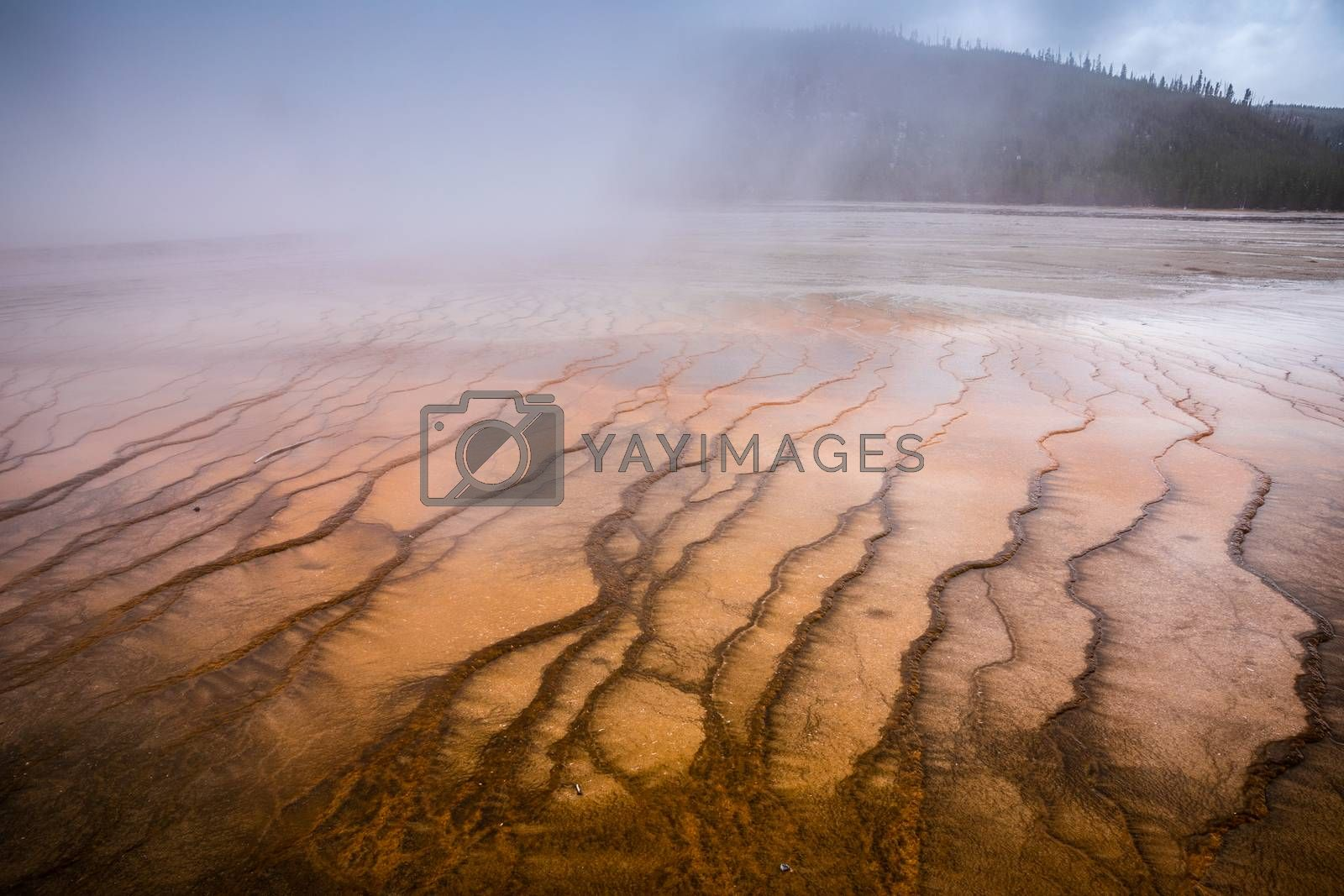 Smoke covered pattern orange pond of Grand Prismatic Spring, famous geyser basin in Yellowstone National Park, Wyoming, USA.
