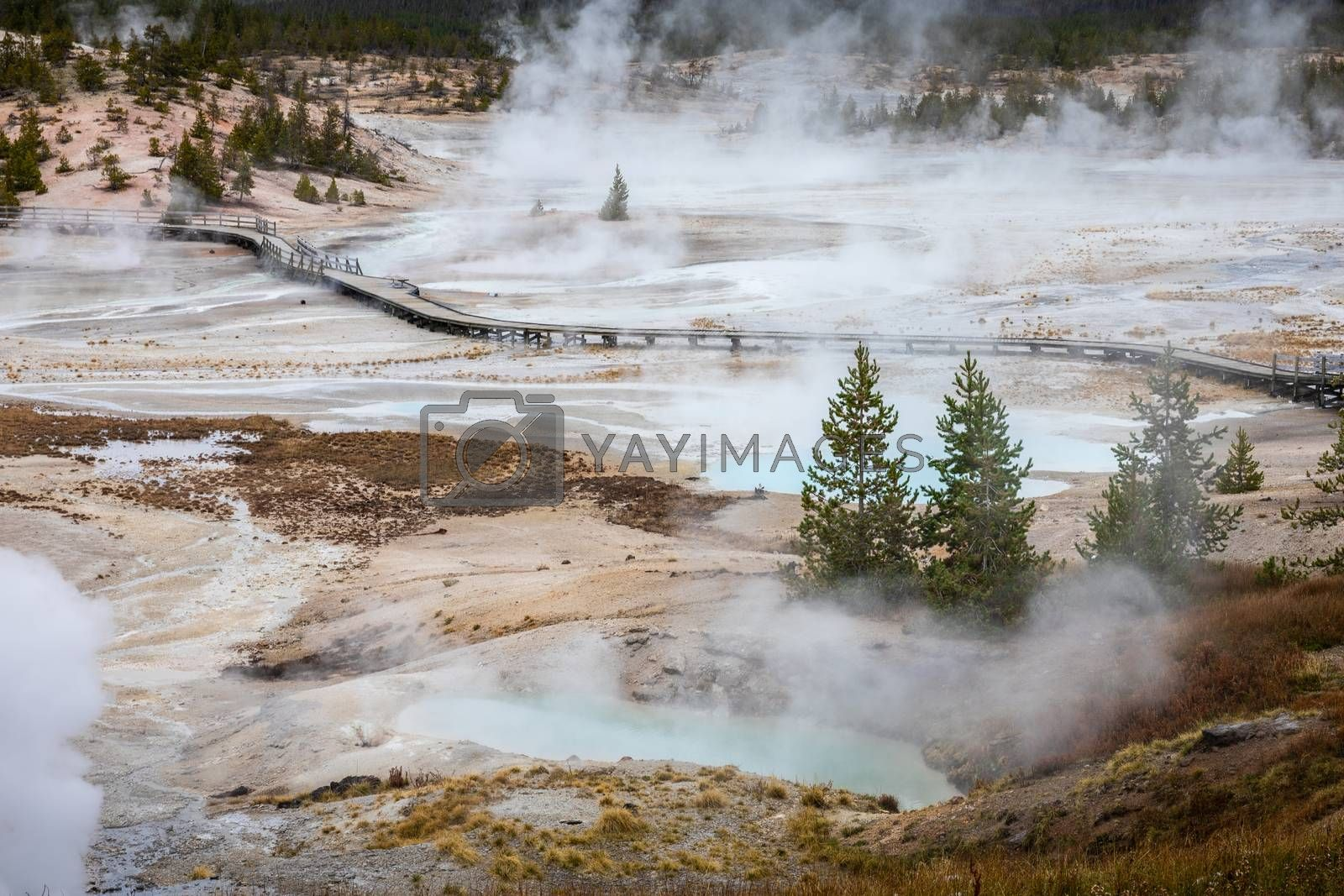 Aerial of hot environment with smoke surrounding by boardwalk for observation the geyser basins of Norris Geyser Basin, Yellowstone National Park, Wyoming, USA.