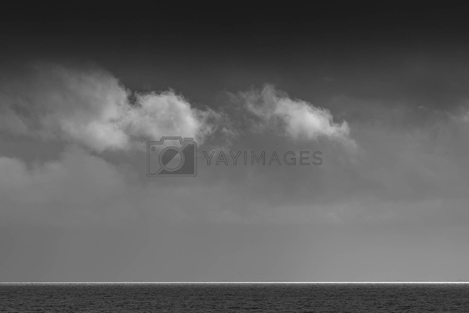 Royalty free image of Clouds over the Wadden Sea in black and white   by Tofotografie