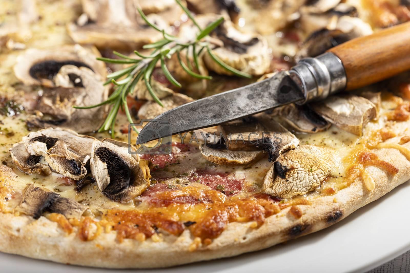 closeup of mushroom pizza with rosemary