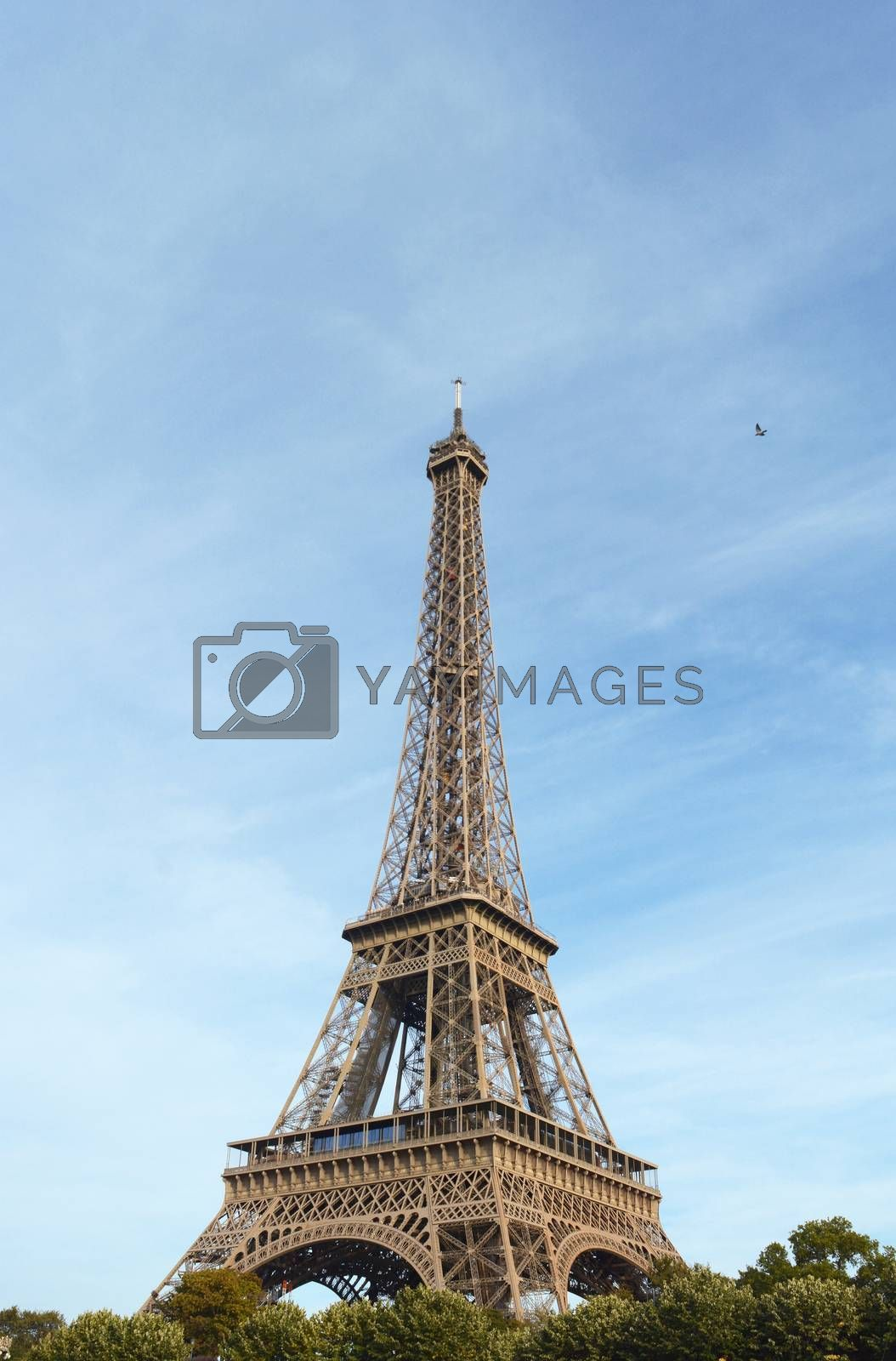 Eiffel Tower landmark stands 324 metres high on the banks of the Seine in Paris, France