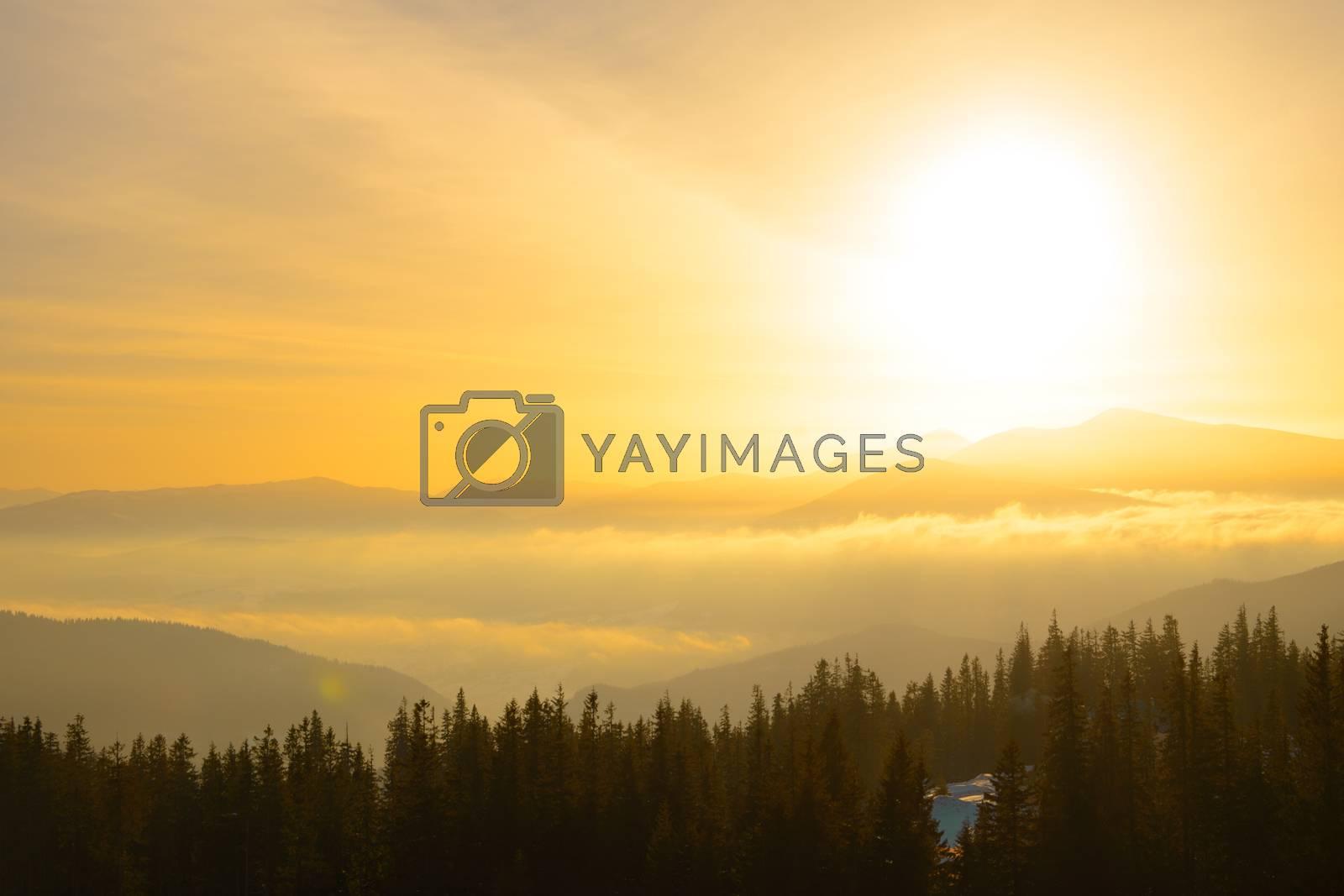 Sunrise in the Ukrainian Carpathian Mountains. Sun Rising over Hoverla Mountain, the Highest Point of Ukraine.