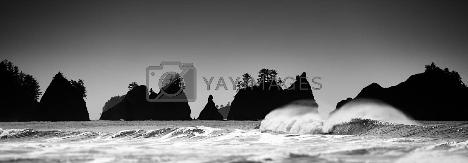 Royalty free image of Pacific Coast Seascape by nialat