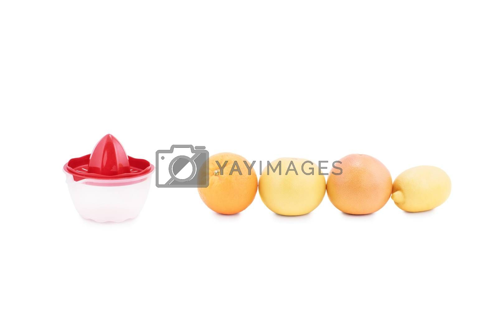 Close up shot of citrus fruits arranged in a line next to a manual juice squeezer, isolated on white background. Orange, grapefruit and lemon next to a juice squeezer.