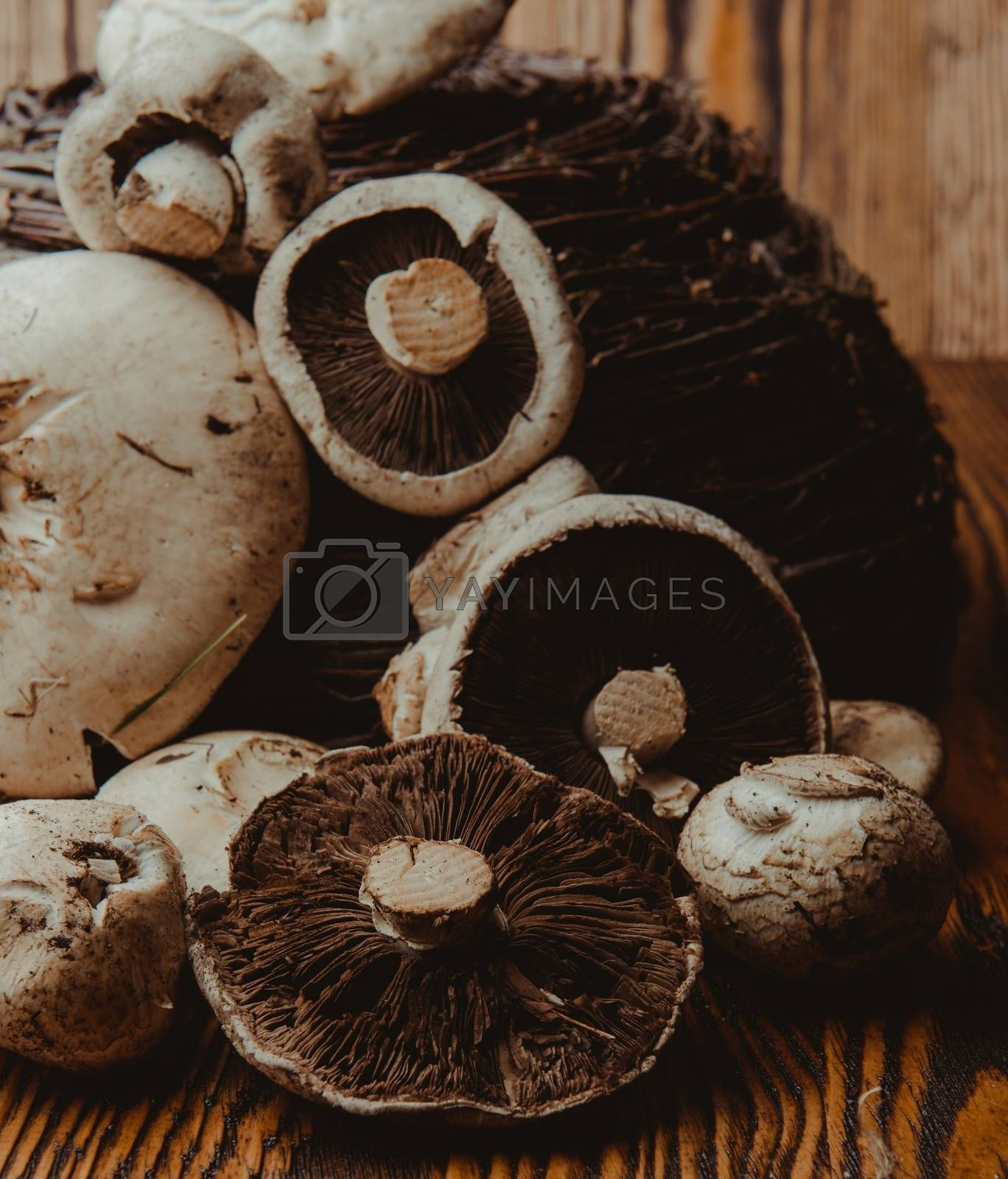 composition poured olive oil, mushrooms, garlic on wooden background. healthy food