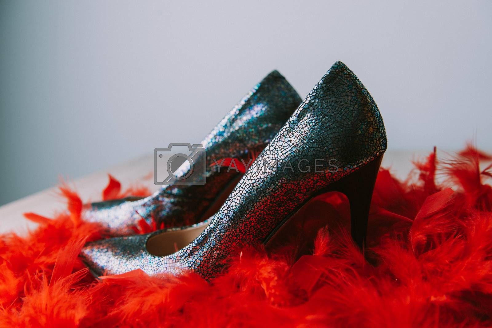 Black high heel women shoes isolated on wooden table