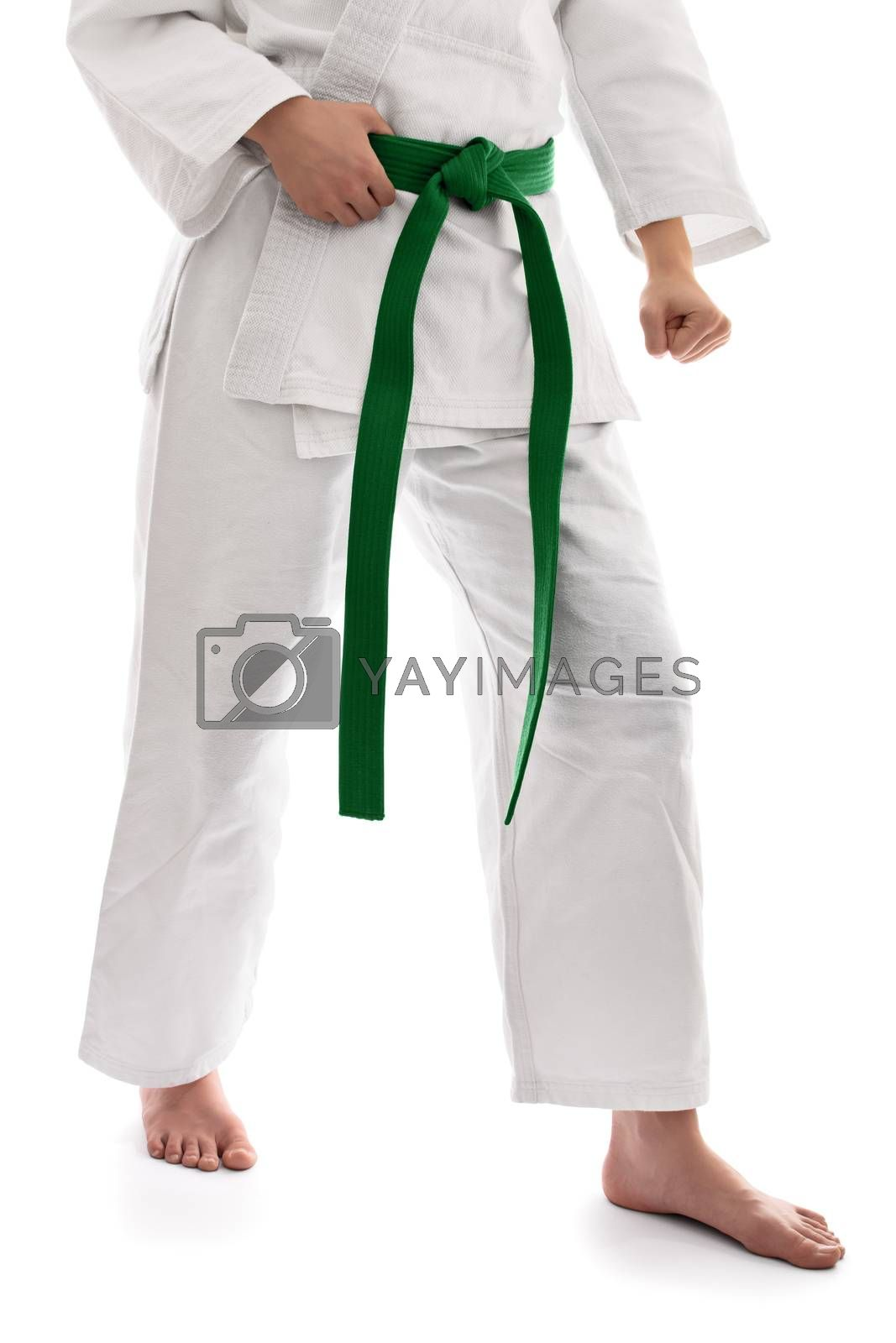 Below the waist shot of a martial arts fighter in white kimono with green belt in a combat stance, isolated on white background.