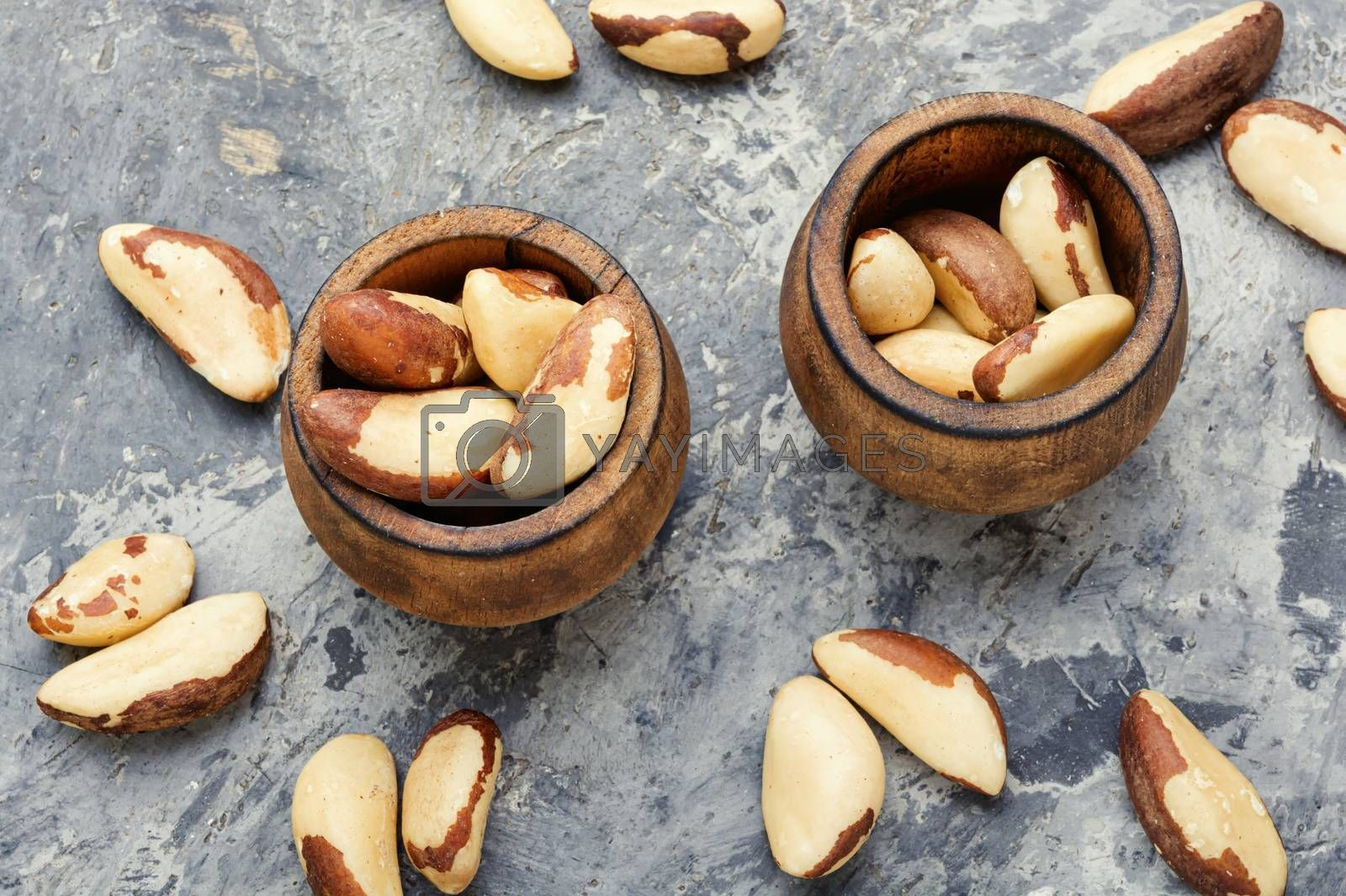 Wooden retro mortar filled with Brazil nut