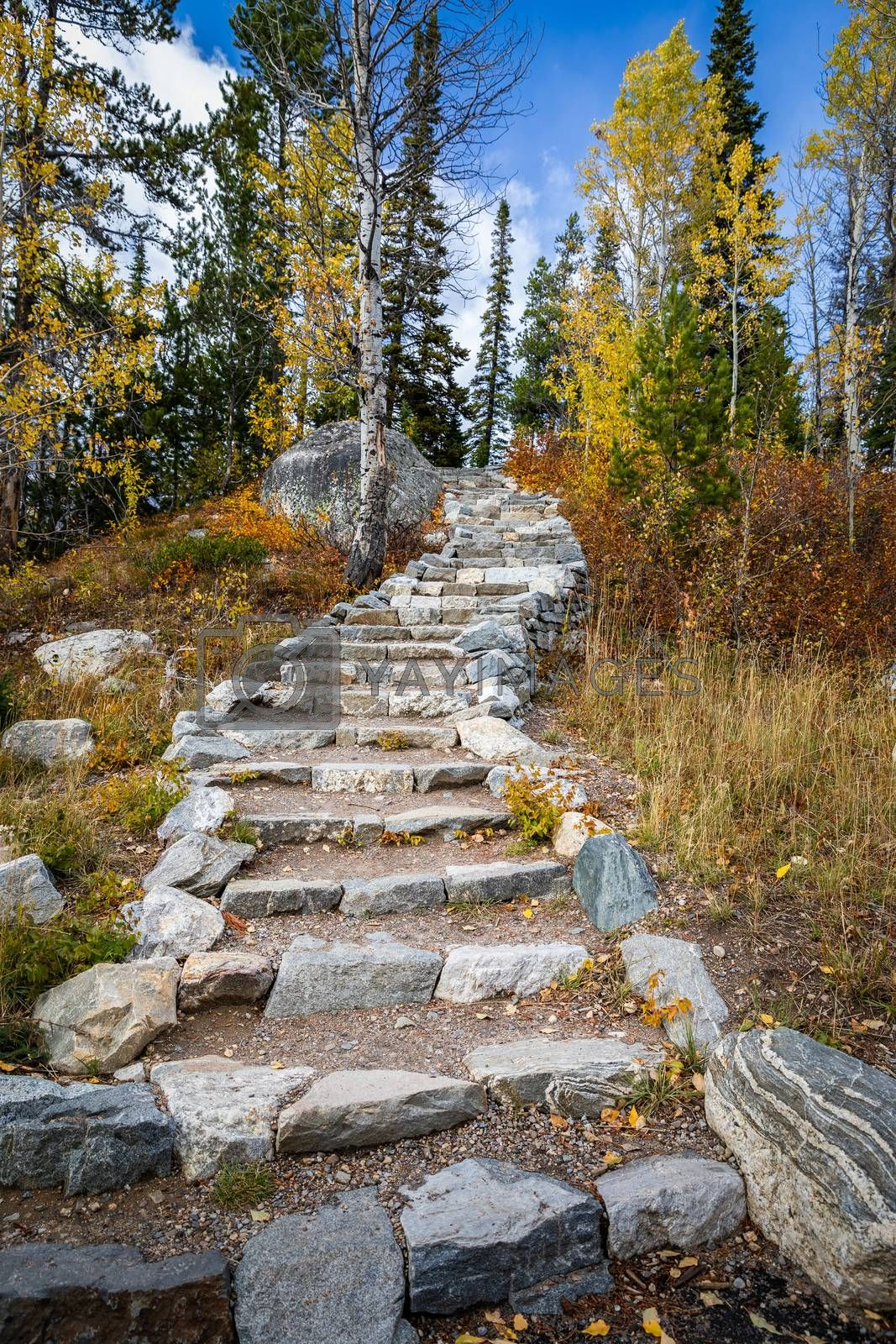 Outdoor stair made from stone inside color changing forest of Grand Teton National Park, Wyoming, USA.