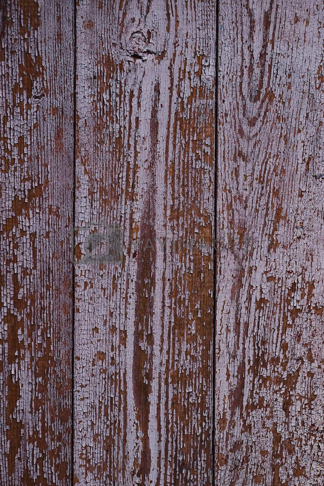 Old red wooden texured door surface closeup. Relief on surface.  by alexsdriver
