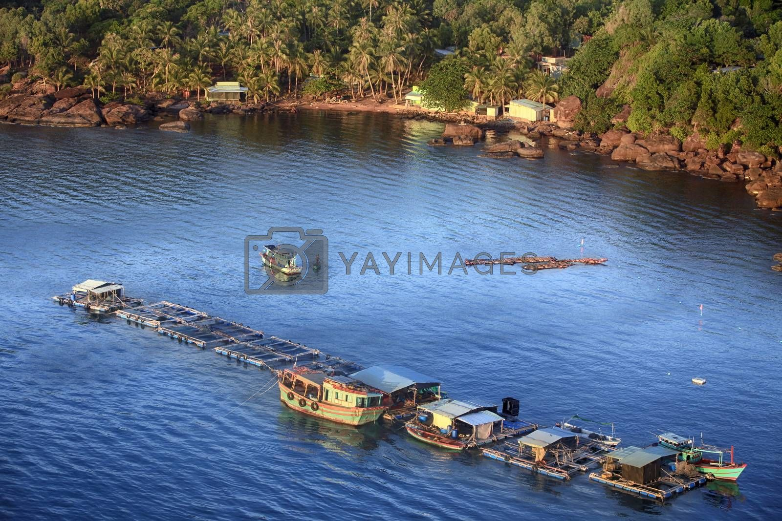 Aerial view  Oyster farm in sea. Vietnam, Phu Quoc