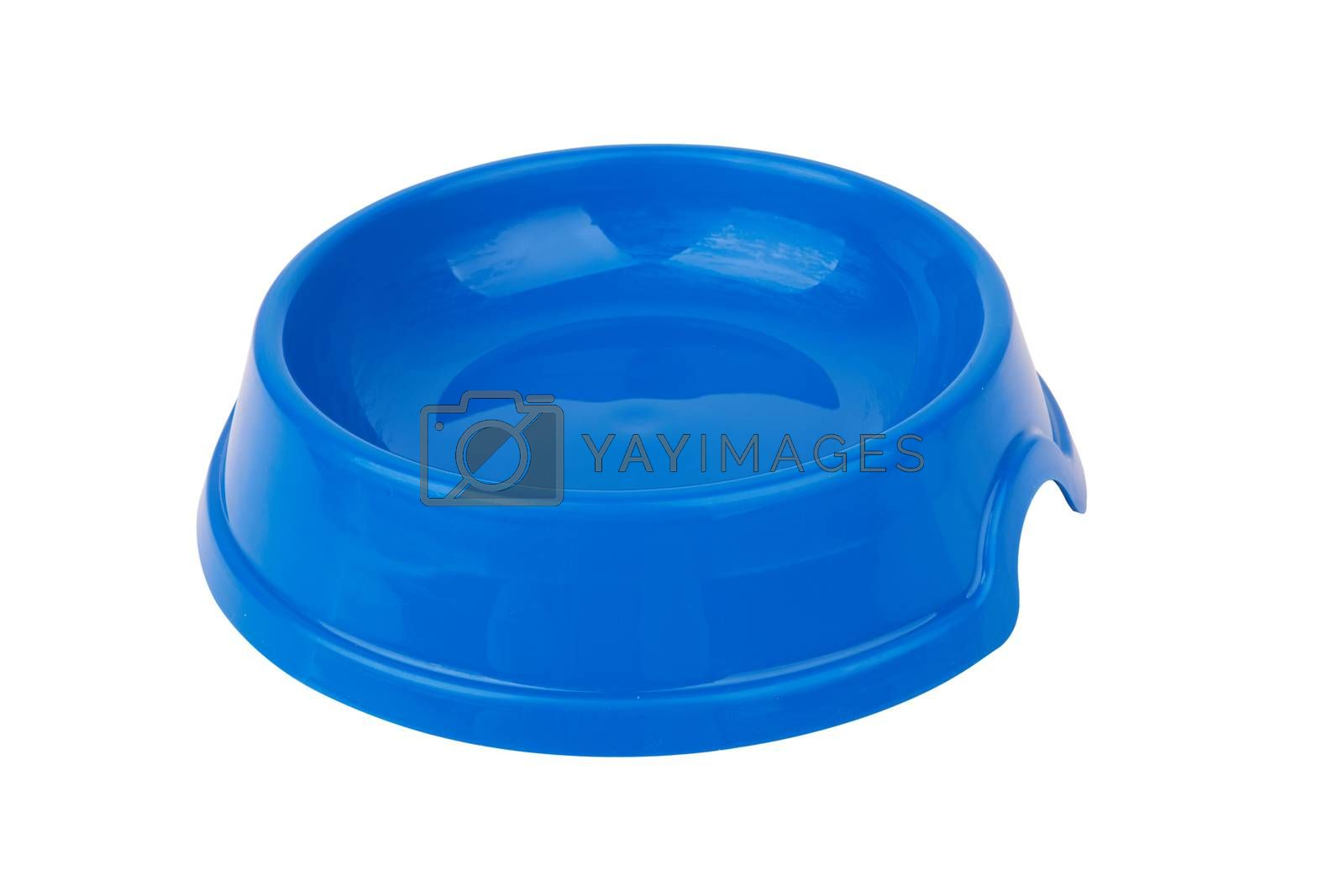 bowl to eat pets on a white background
