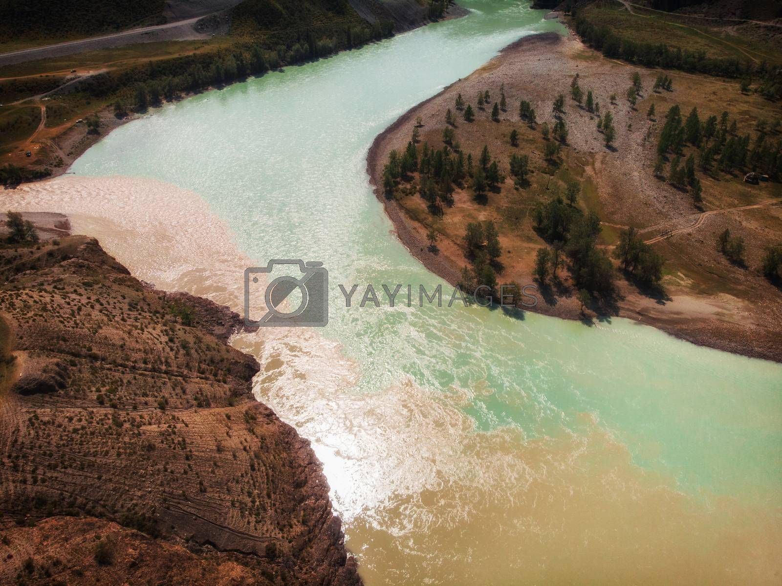 The confluence of two rivers, Katun and Chuya, the famous tourist spot in the Altai mountains, Siberia, Russia, aerial shot.