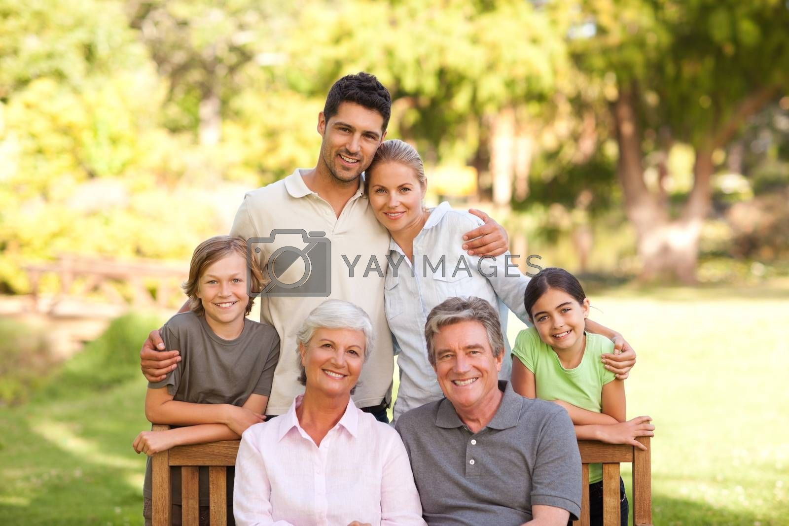 Family in the park during the summer