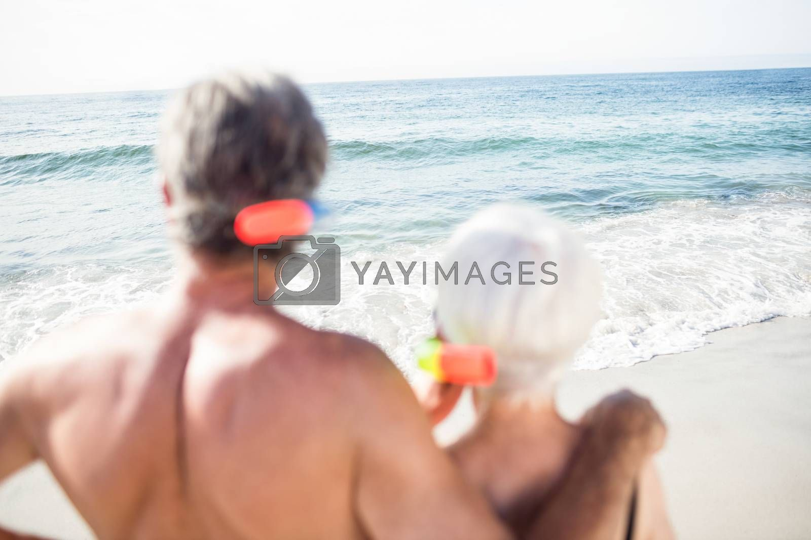 Rear view of senior couple looking at sea on a sunny day