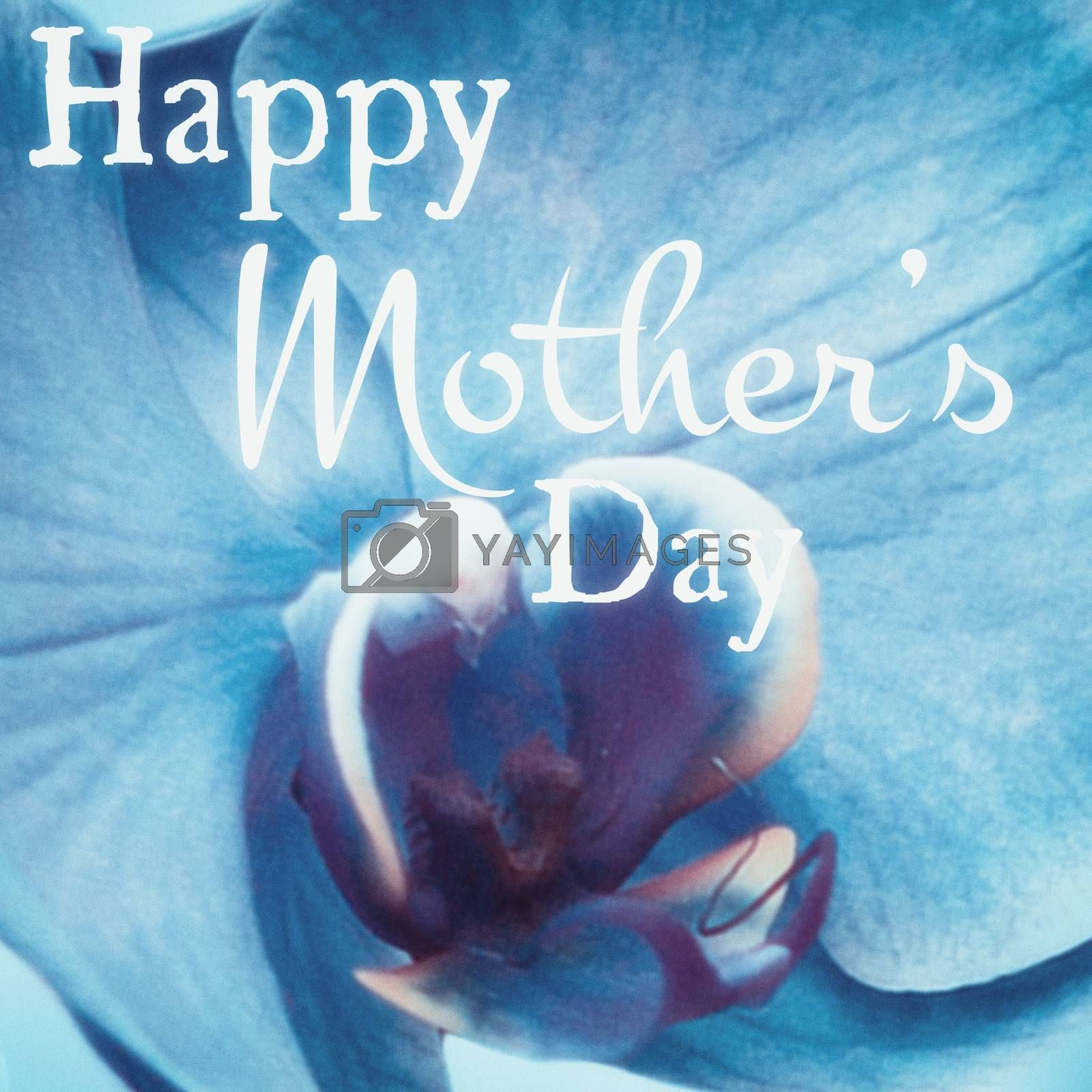Happy mothers day message on flower background