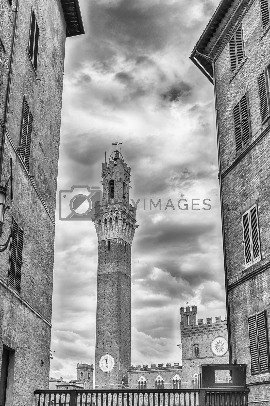 View of Torre del Mangia medieval tower, located in Piazza del Campo, it is one of the most iconic landmark of Siena, Italy
