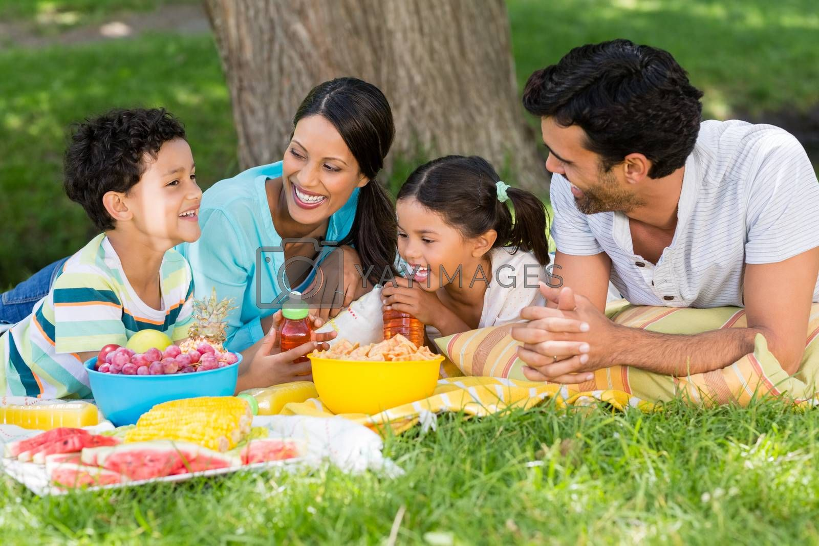 Happy family enjoying together in park by Wavebreakmedia