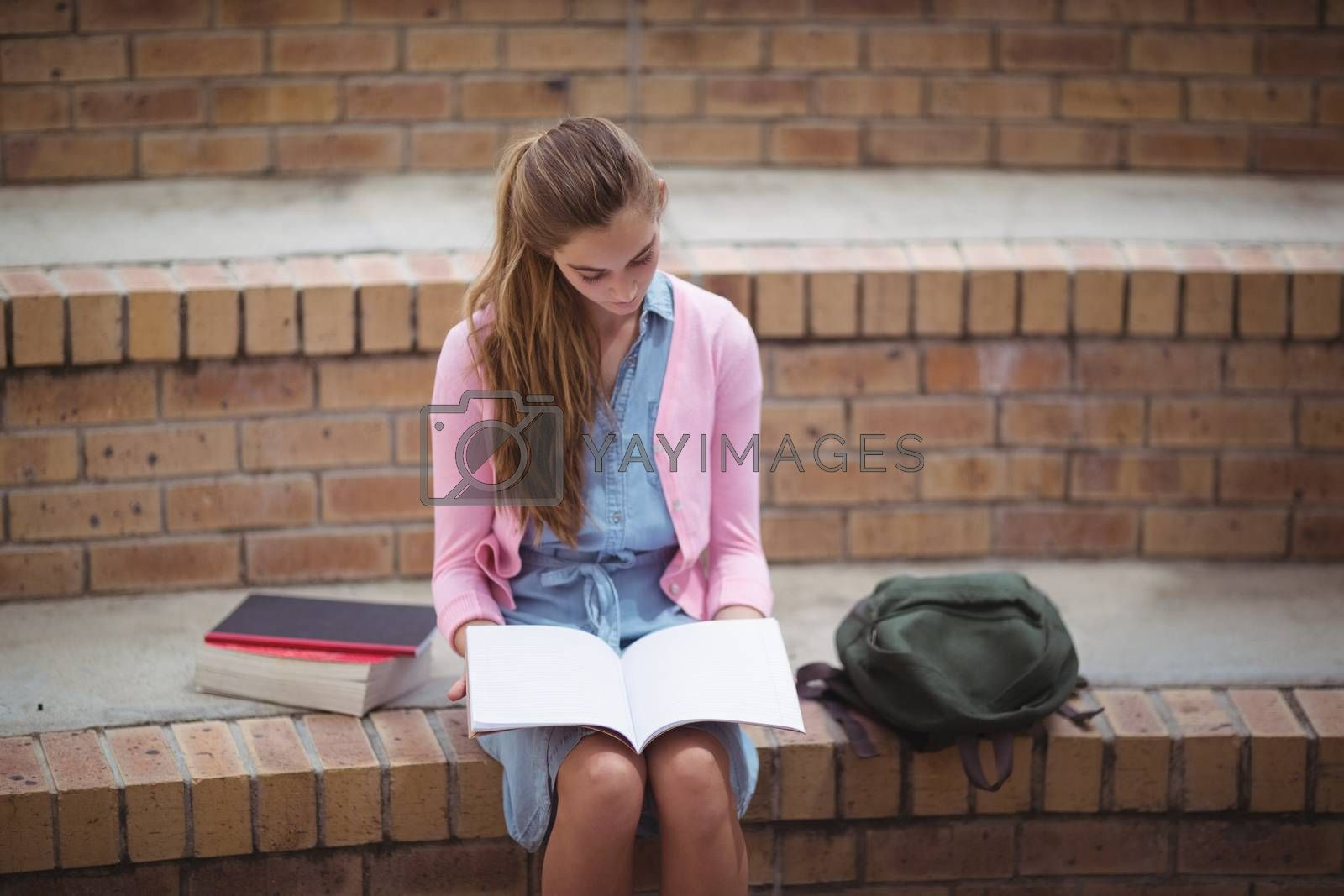 Attentive schoolgirl reading book in campus at school