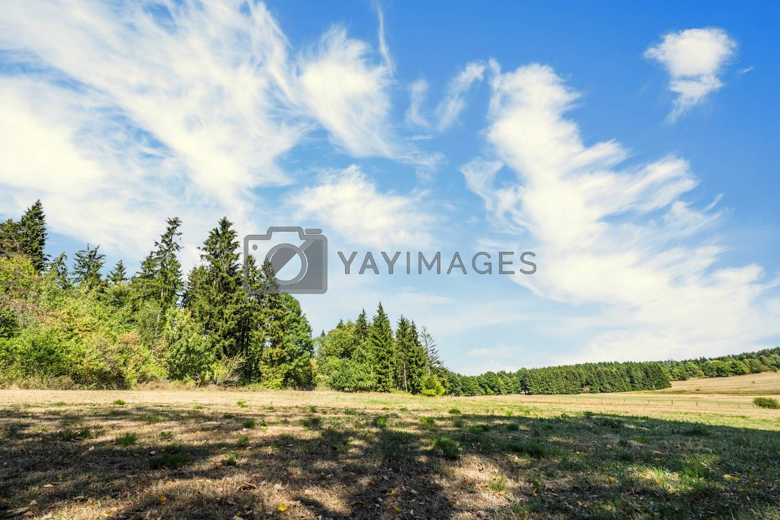Summer landscape of a countryside valley in Germany with dry plains under a blue sky