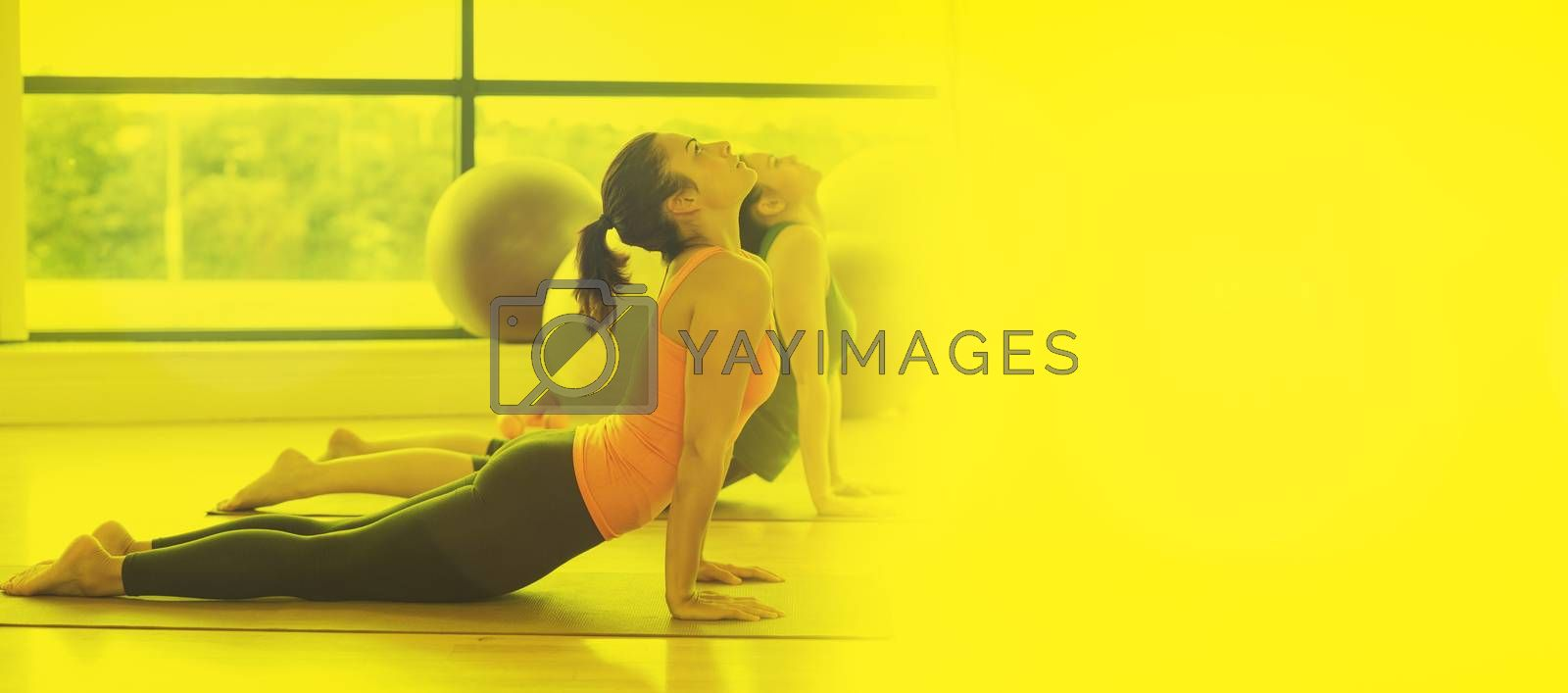 Fit women doing the cobra pose in fitness studio against glowing background