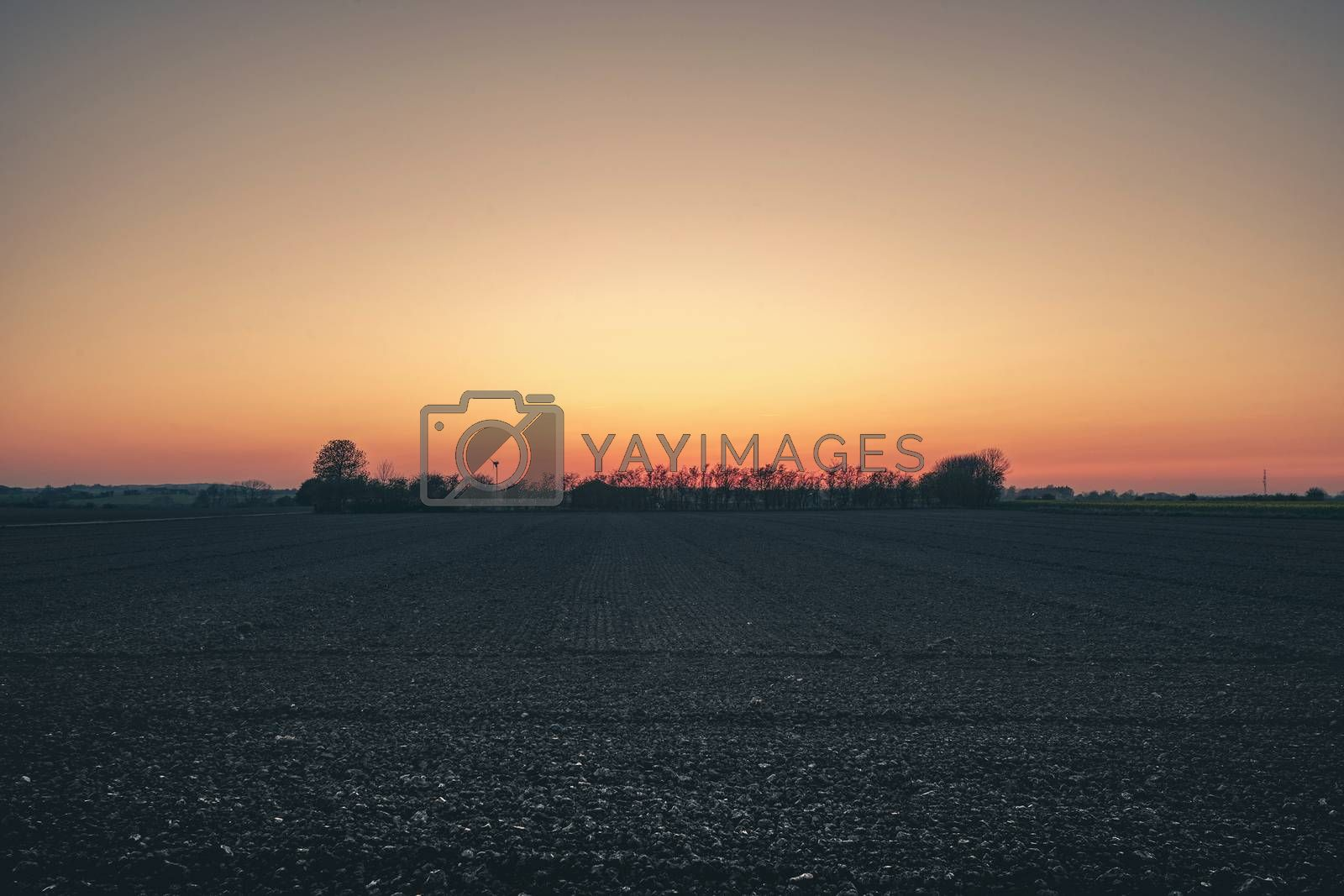 Rural countryside landscape with a farm in the sunset in a small forest on a field