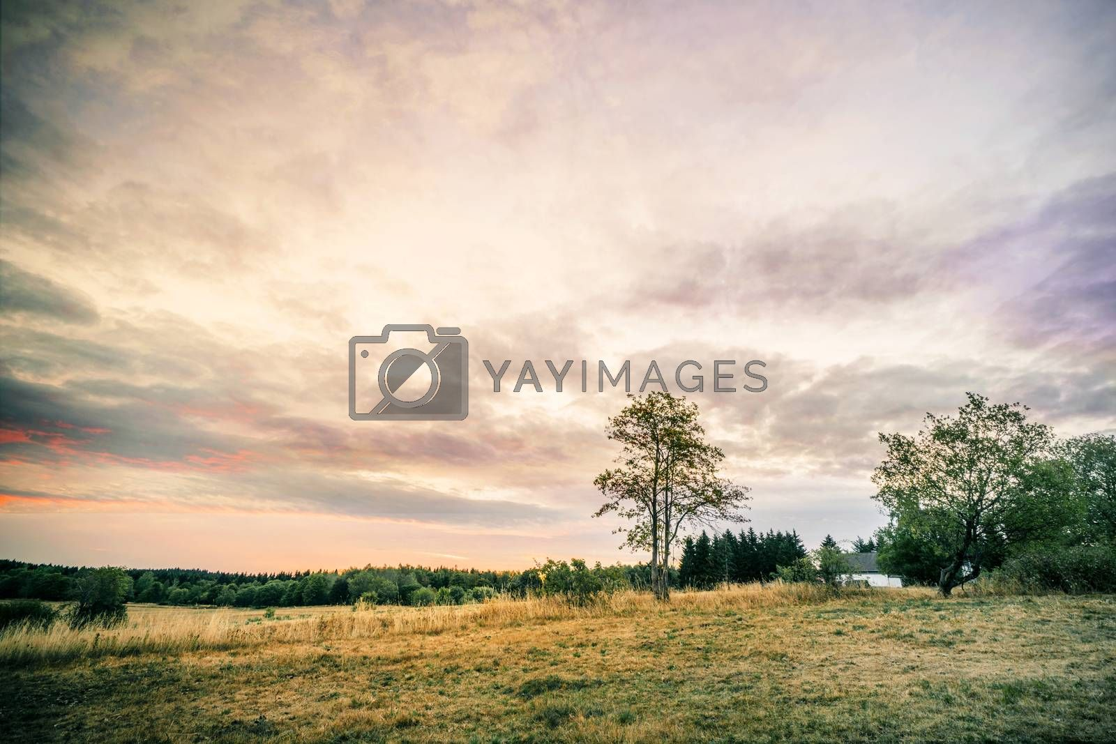 Sunset over a countryside landscape with a small house and a lonely tree