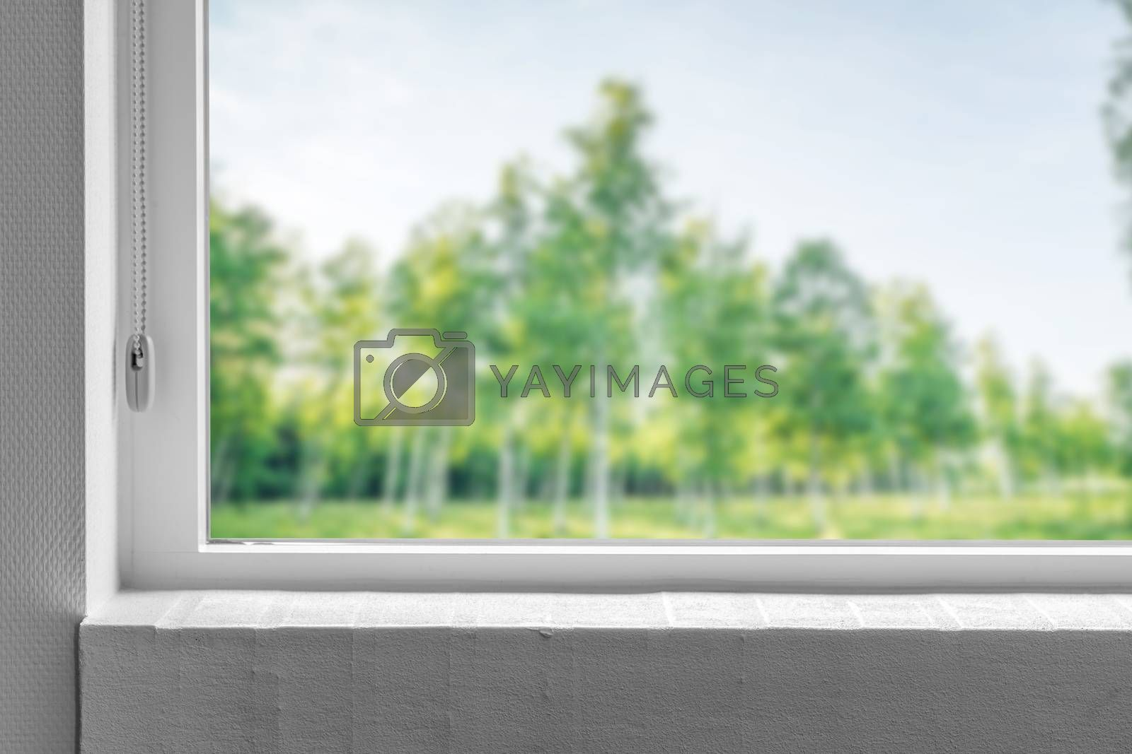 Windowsill with a view to a green garden with trees in the spring
