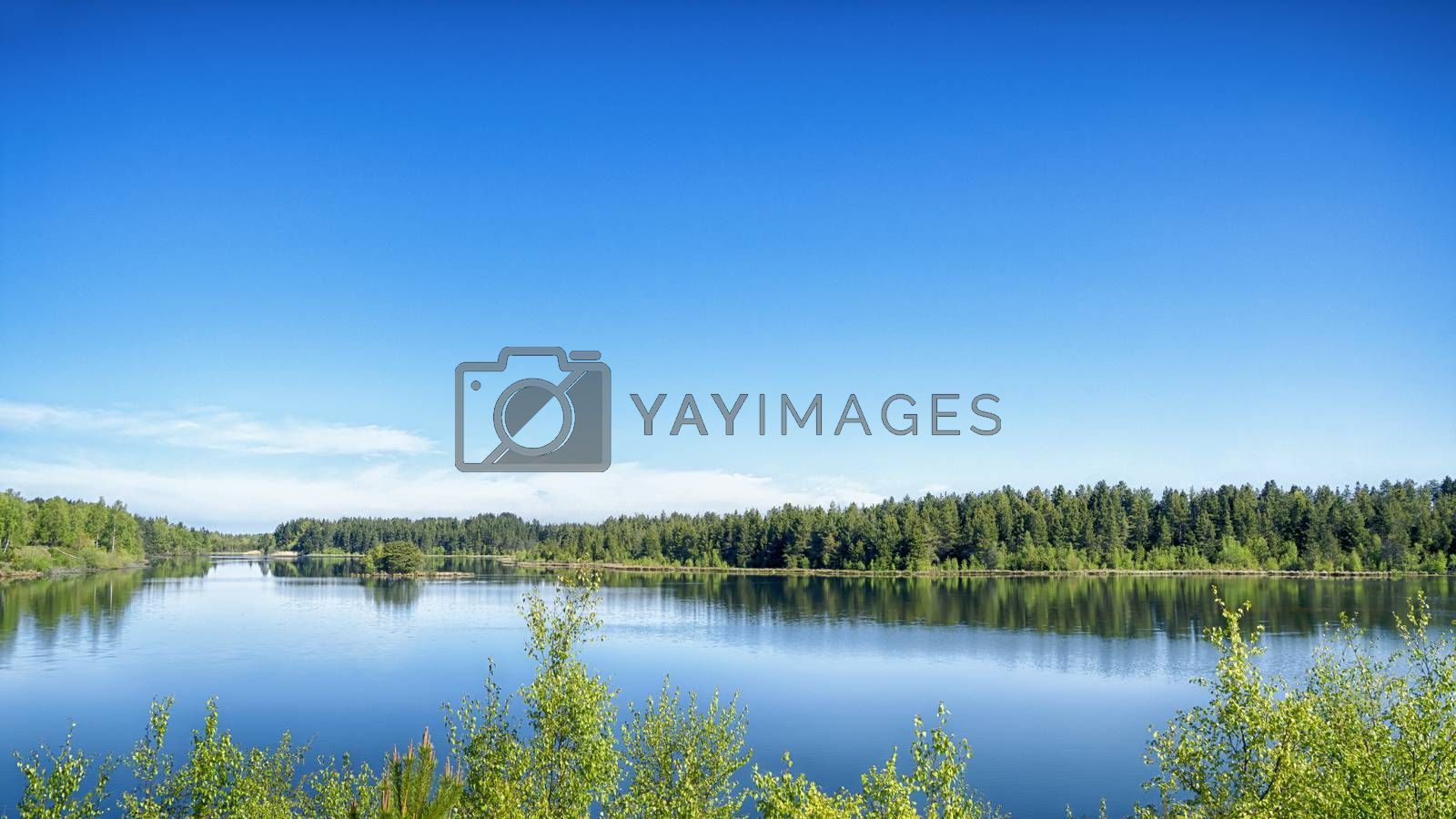 Lake scene with vibrant colors in green and blue in the summertime