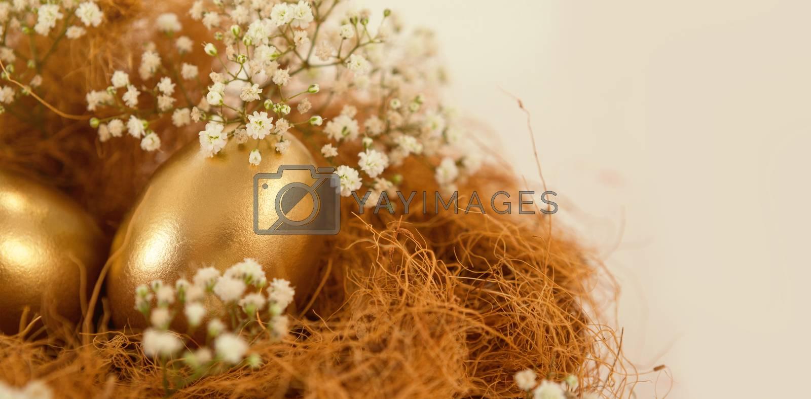 Golden easter eggs in nest against white background