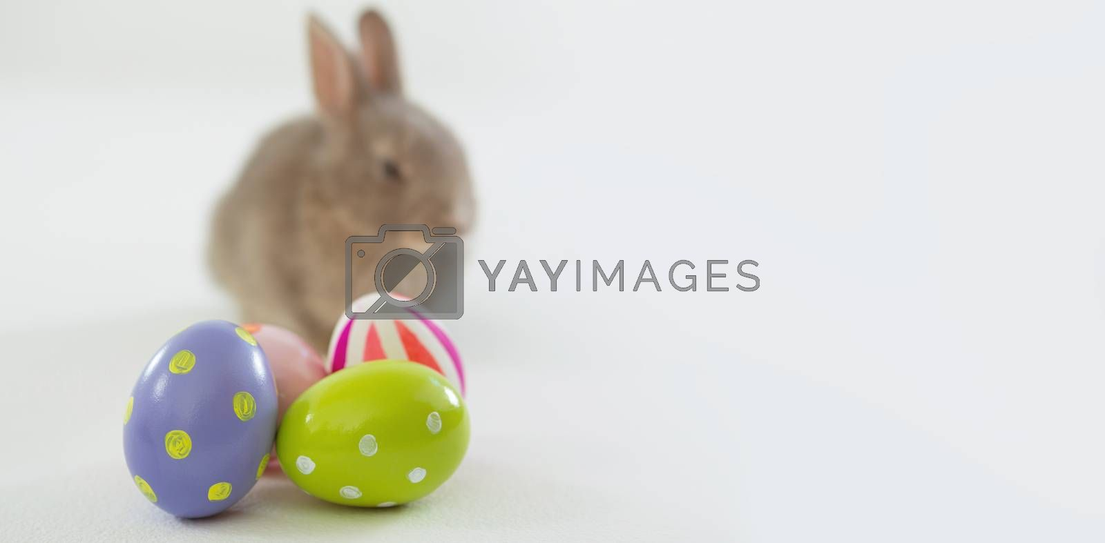 Close-up of Easter eggs and Easter bunny on white background