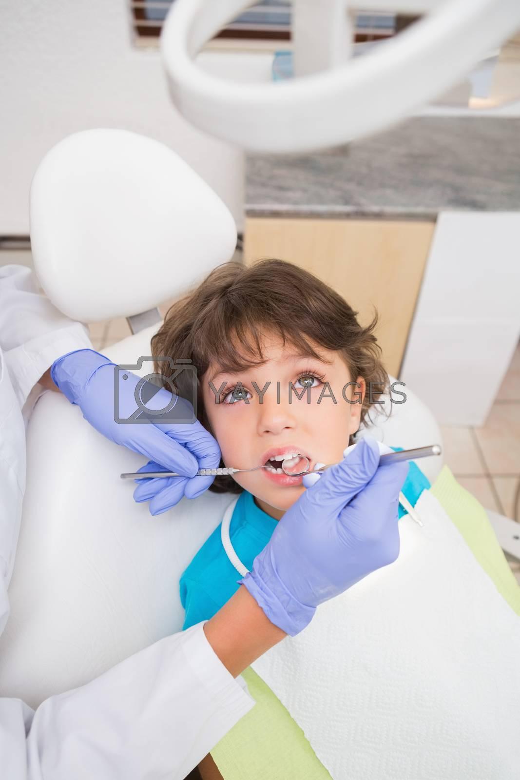 Pediatric dentist examining a little boys teeth in the dentists chair at the dental clinic