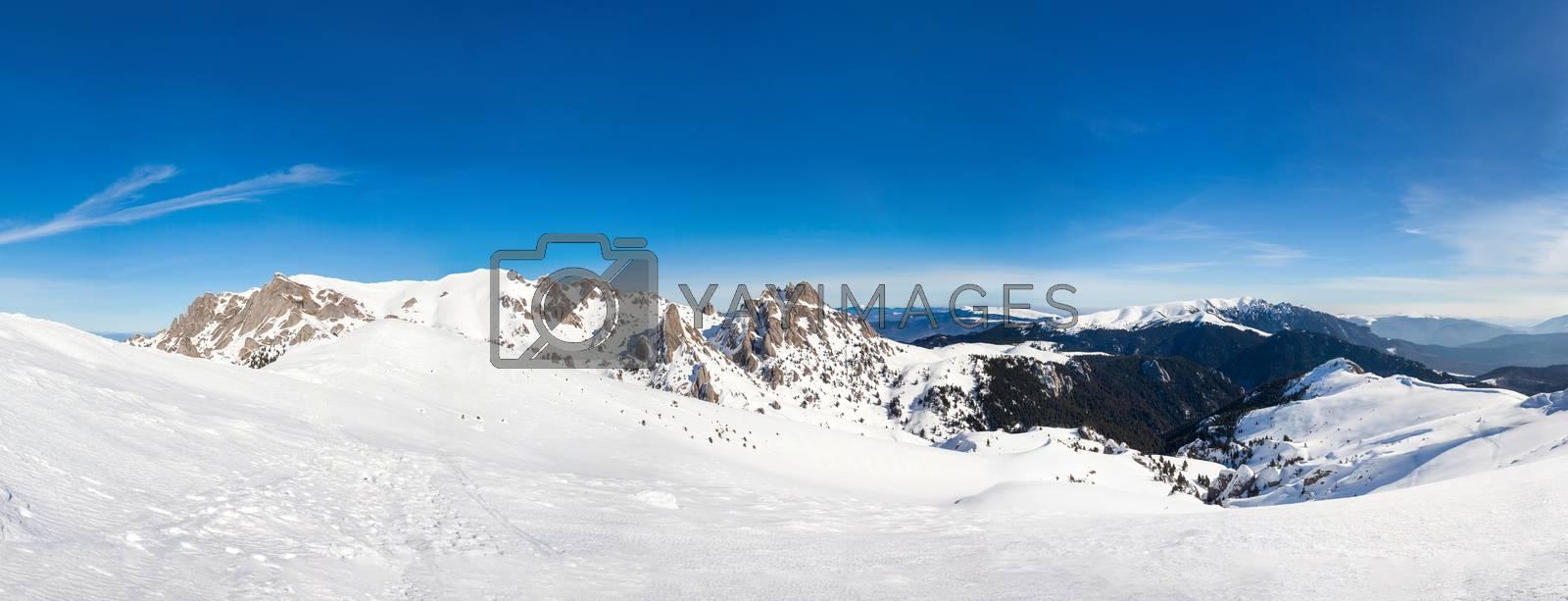Panoramic view of Mount Ciucas peack on winter, part of romanian Carpathian Range