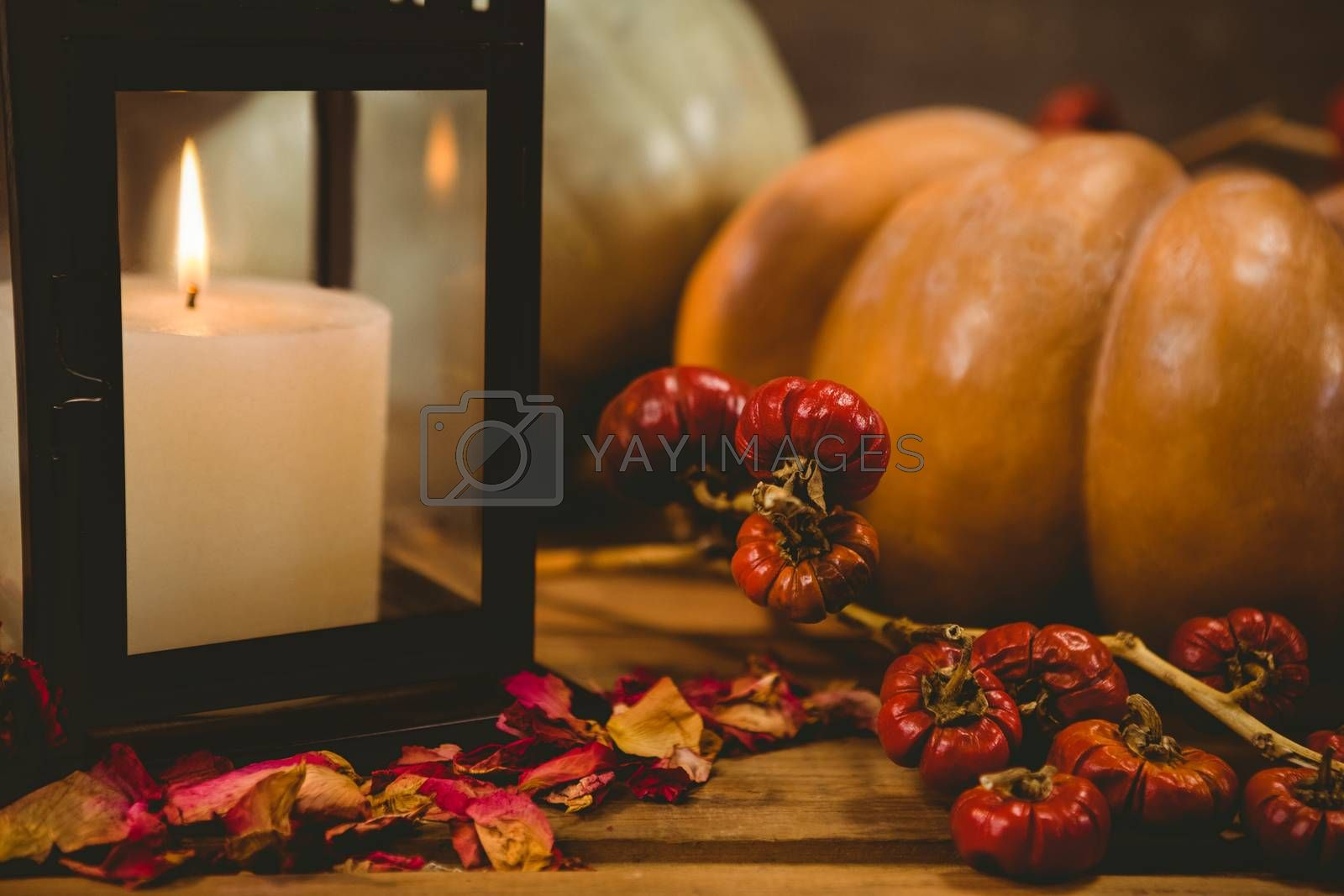 Close up of pumpkins by candle on table during Halloween