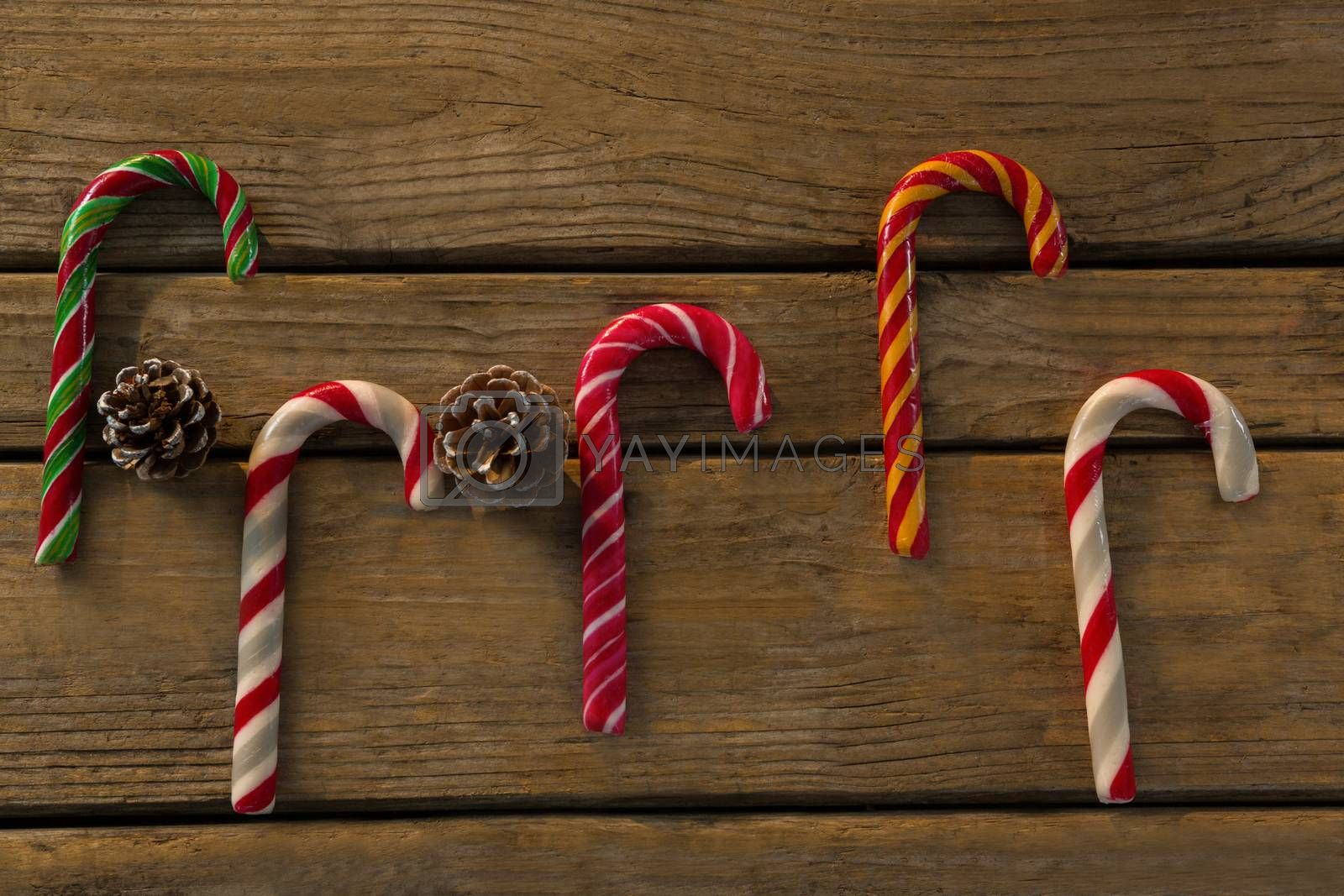 Overhead view of colorful candy canes with pine cones by Wavebreakmedia