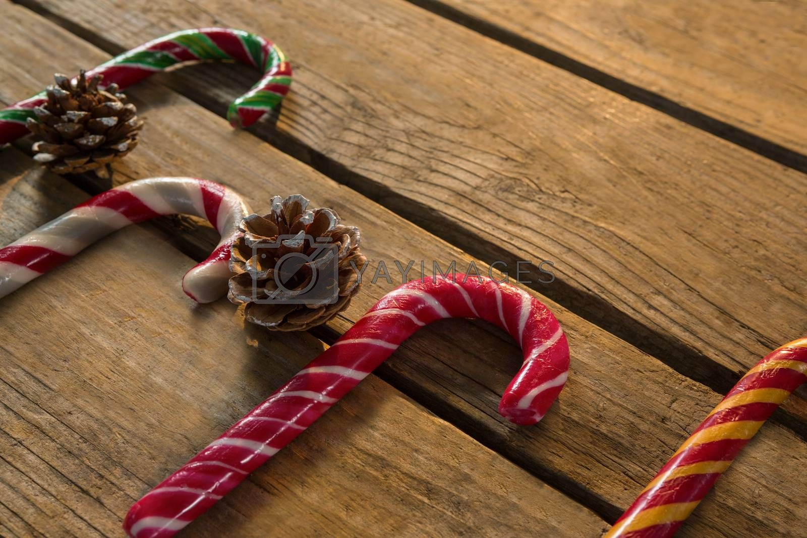 High angle view of colorful candy canes with pine cones by Wavebreakmedia