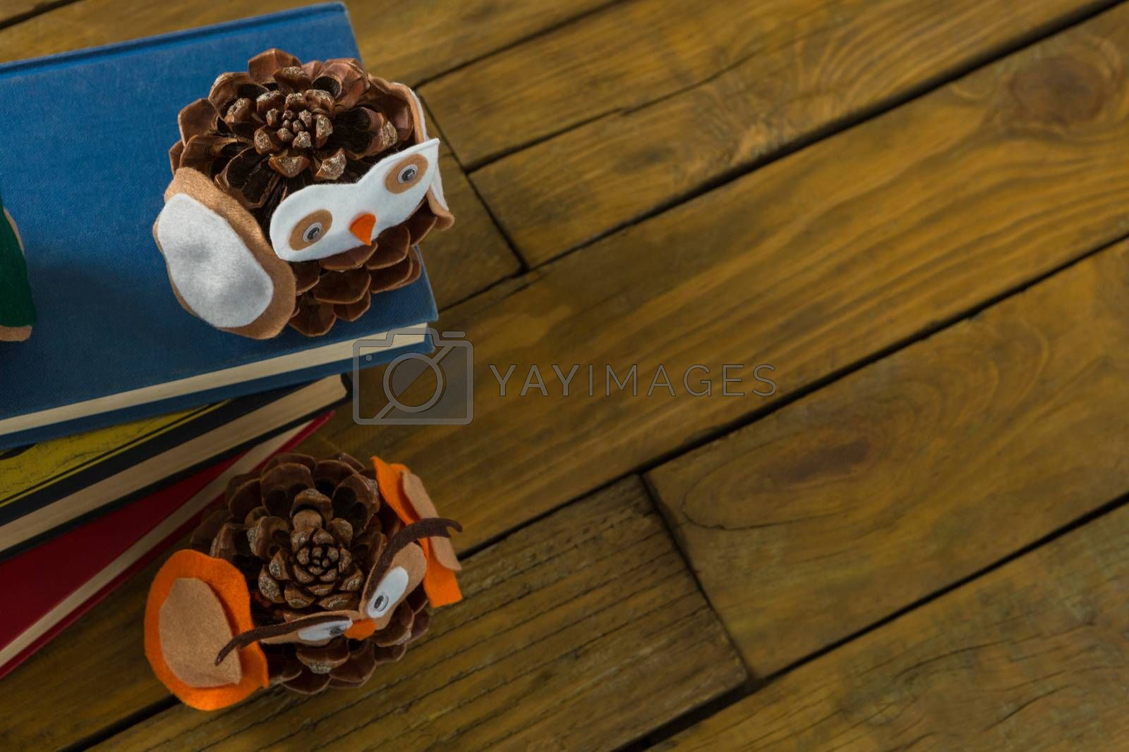 Overhead view of owl decoration made with pine cones on book by Wavebreakmedia