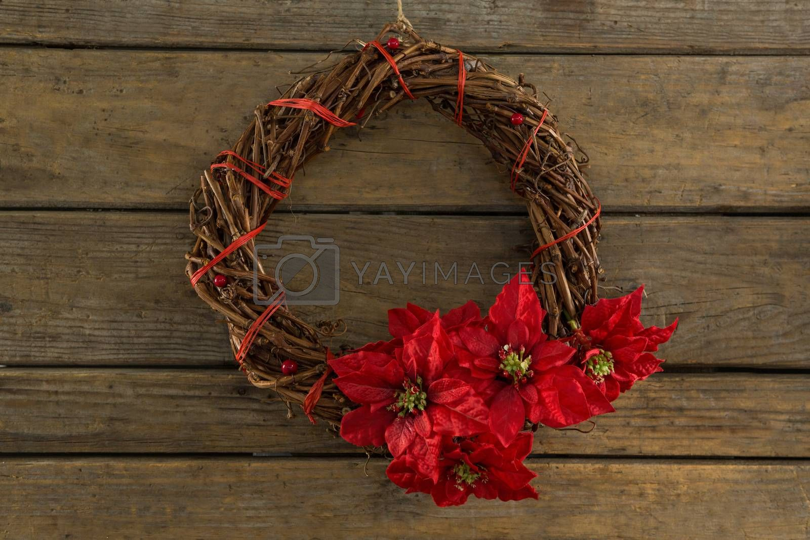 Overhead view of wreath with red poinsettia flowers by Wavebreakmedia