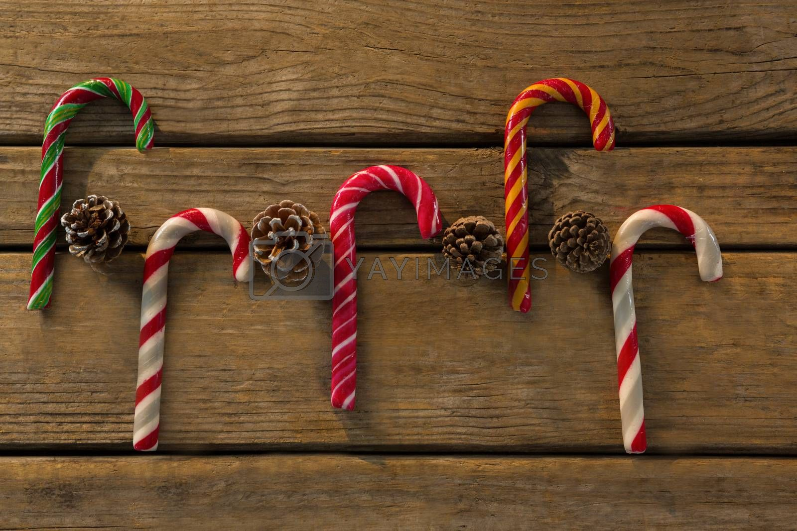 Directly above shot of colorful candy canes with pine cones by Wavebreakmedia