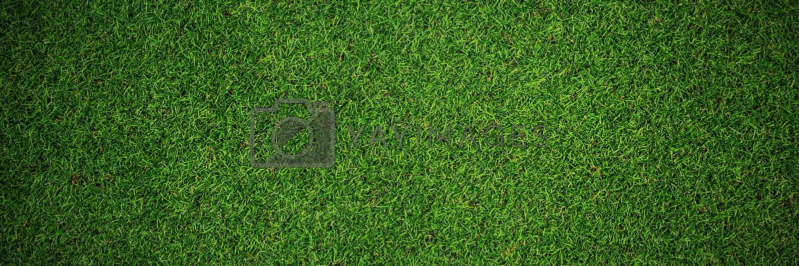 Close up view of astro turf by Wavebreakmedia