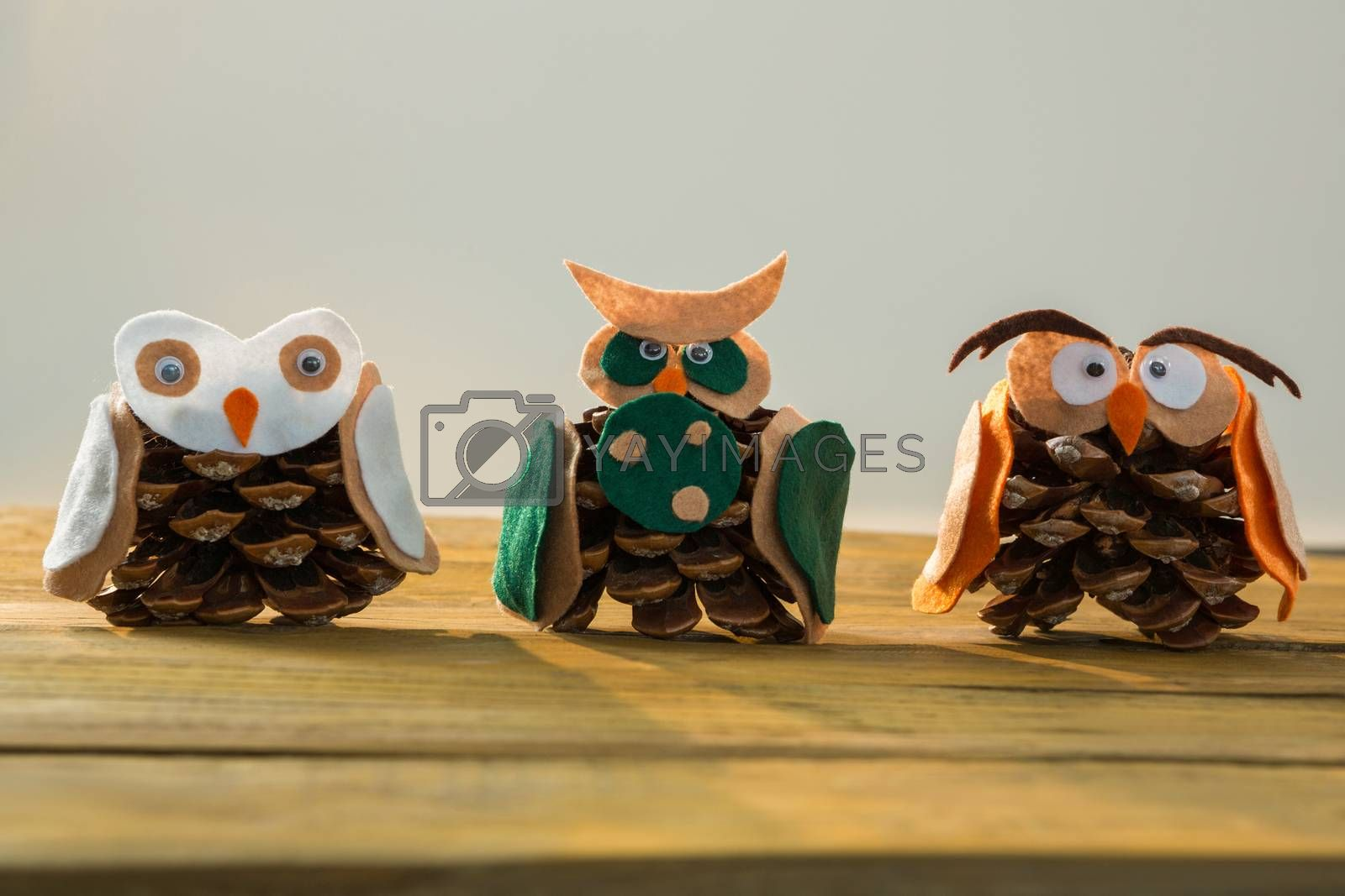 Close up of owls made with pine cones by Wavebreakmedia