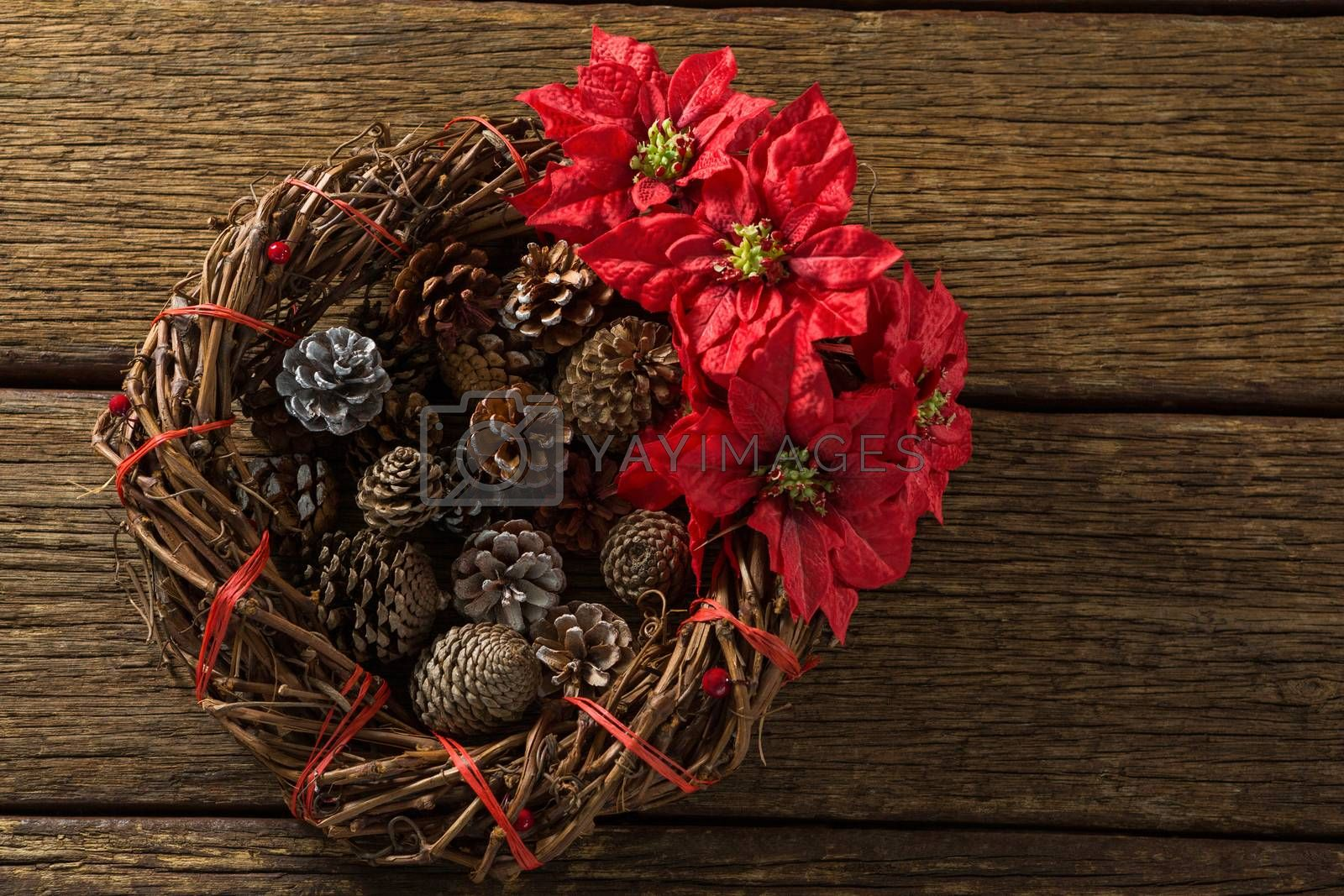 Overhead view of artificial nest with pine cones and poinsettia flowers by Wavebreakmedia