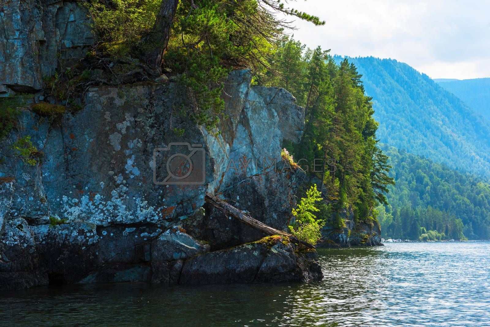 Teletskoye lake in Altai mountains, Siberia, Russia. Beauty summer morning. The lake is a UNESCO World Cultural and Natural Heritage Site.